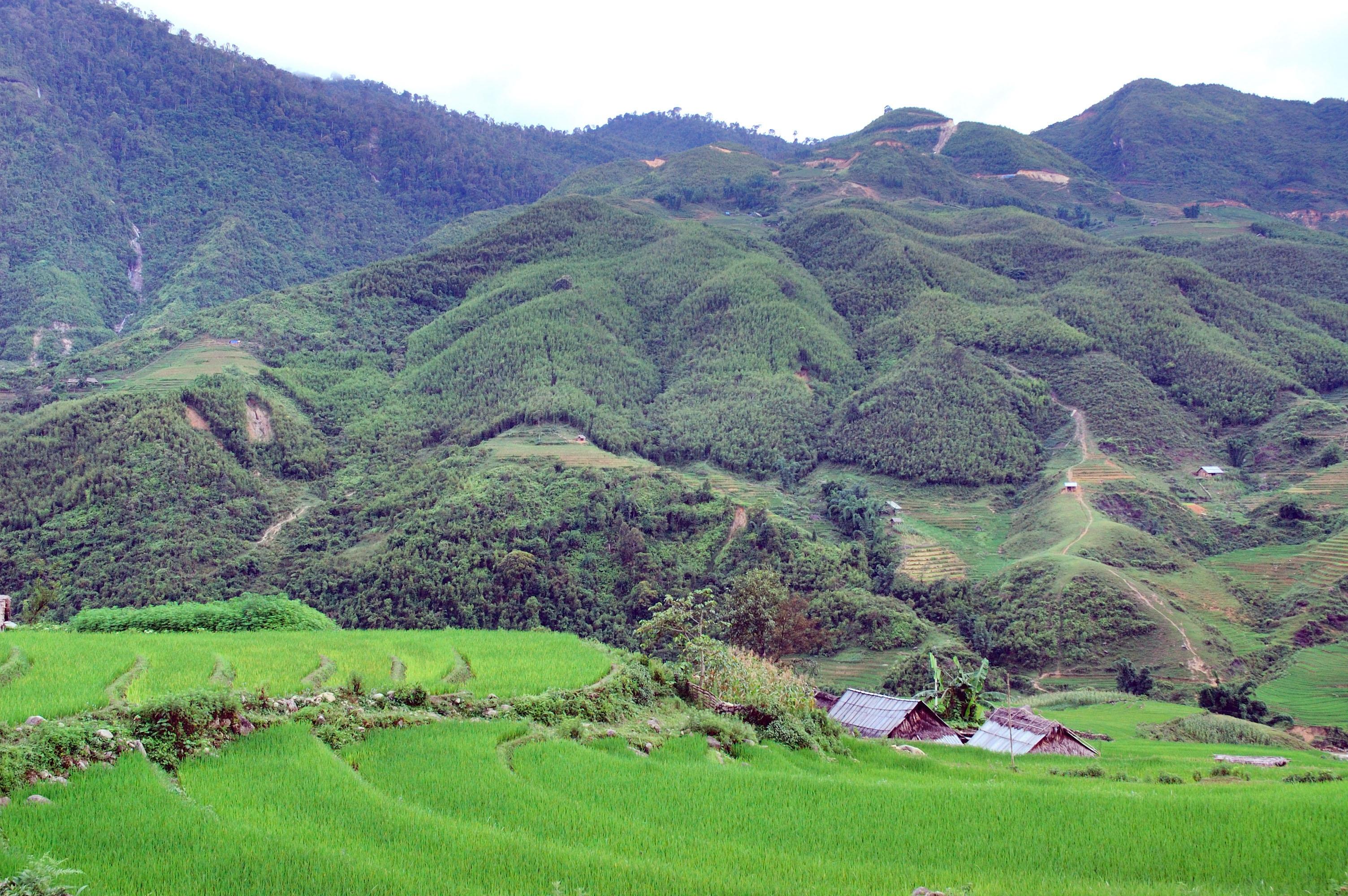 Gambar : pemandangan, bidang, padang rumput, lembah