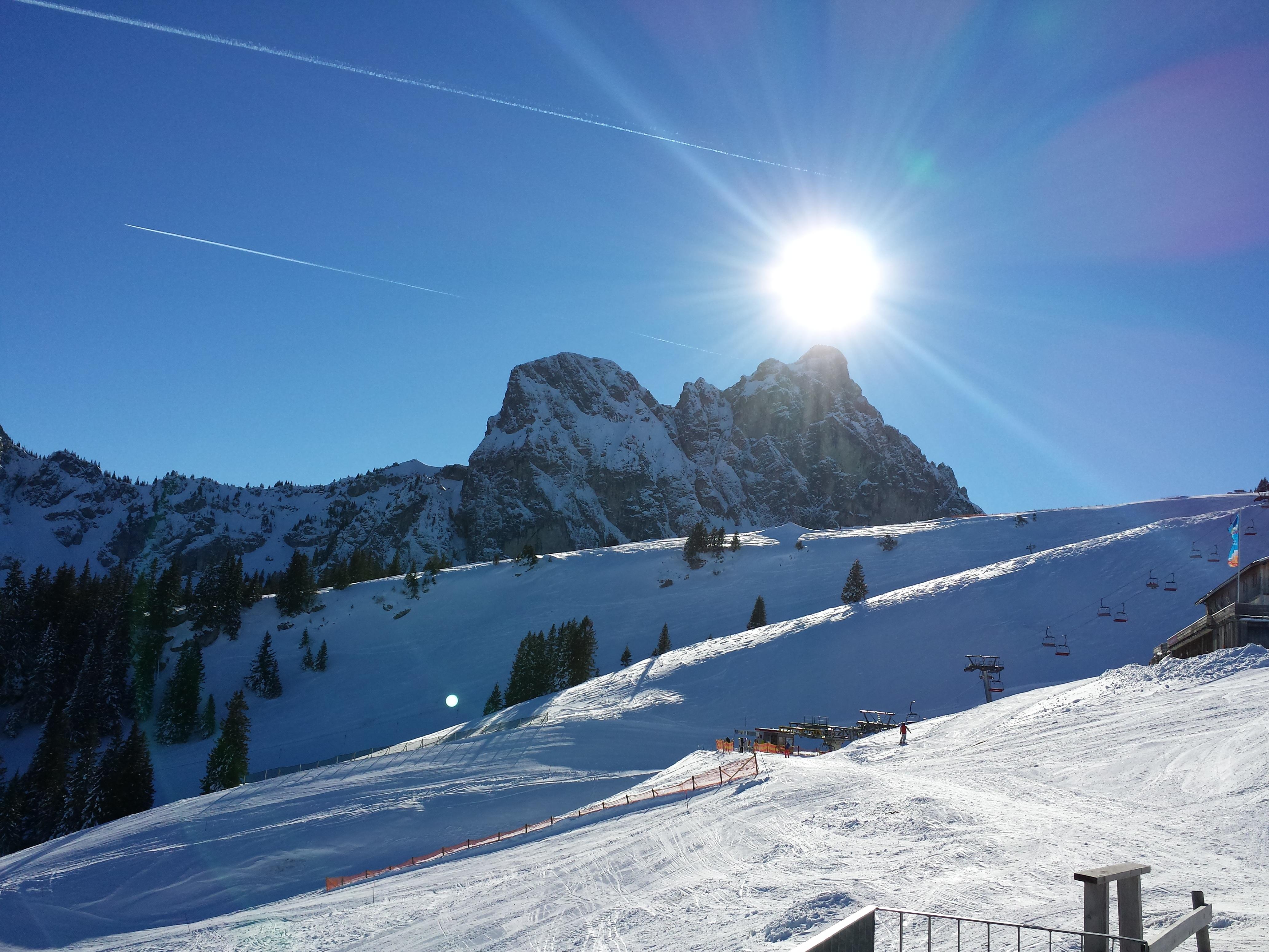 густой куст как фотографировать горы зимой надпечатки ставились поддельных