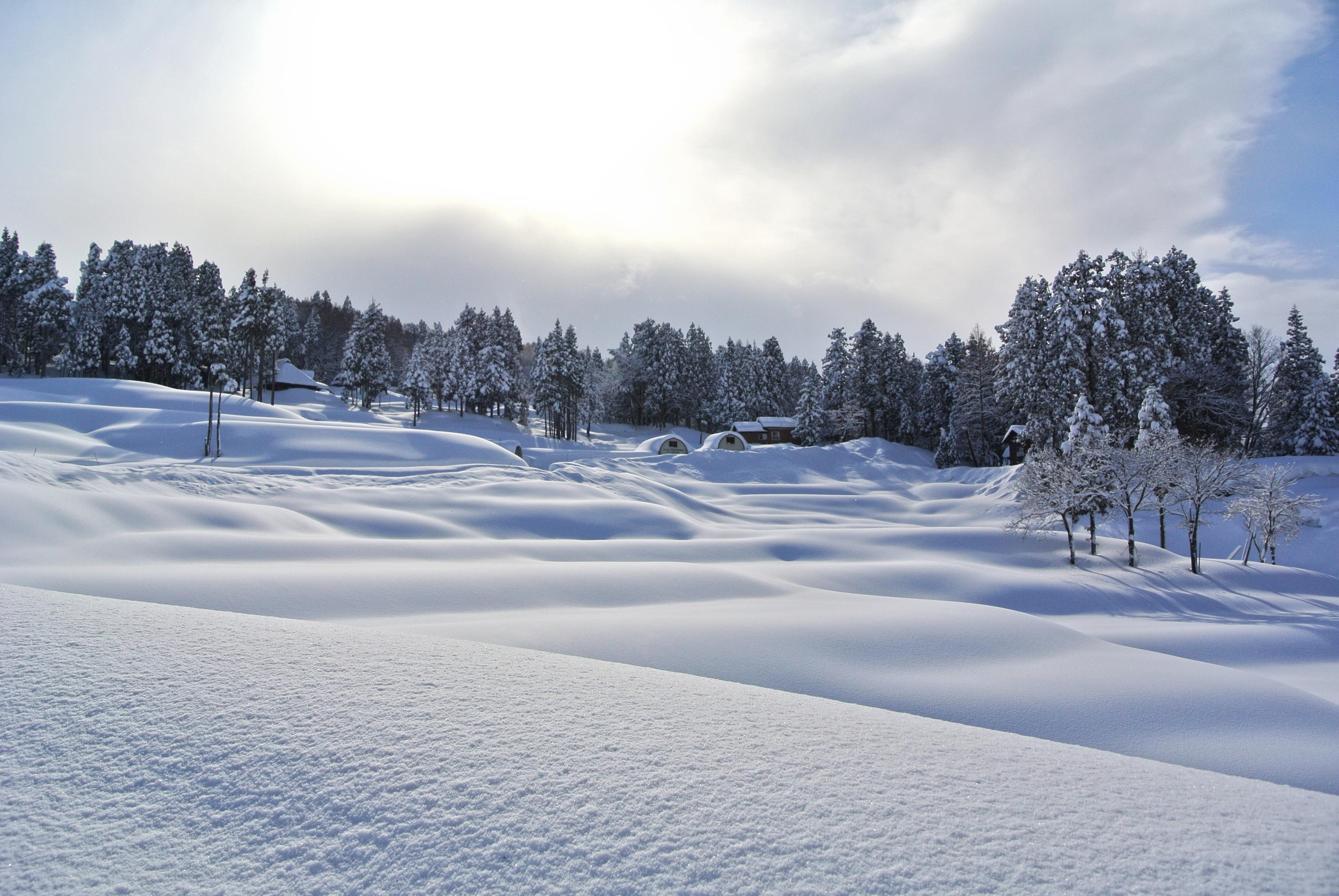 Fotos Gratis : Paisaje, Montaña, Nieve, Invierno, Blanco