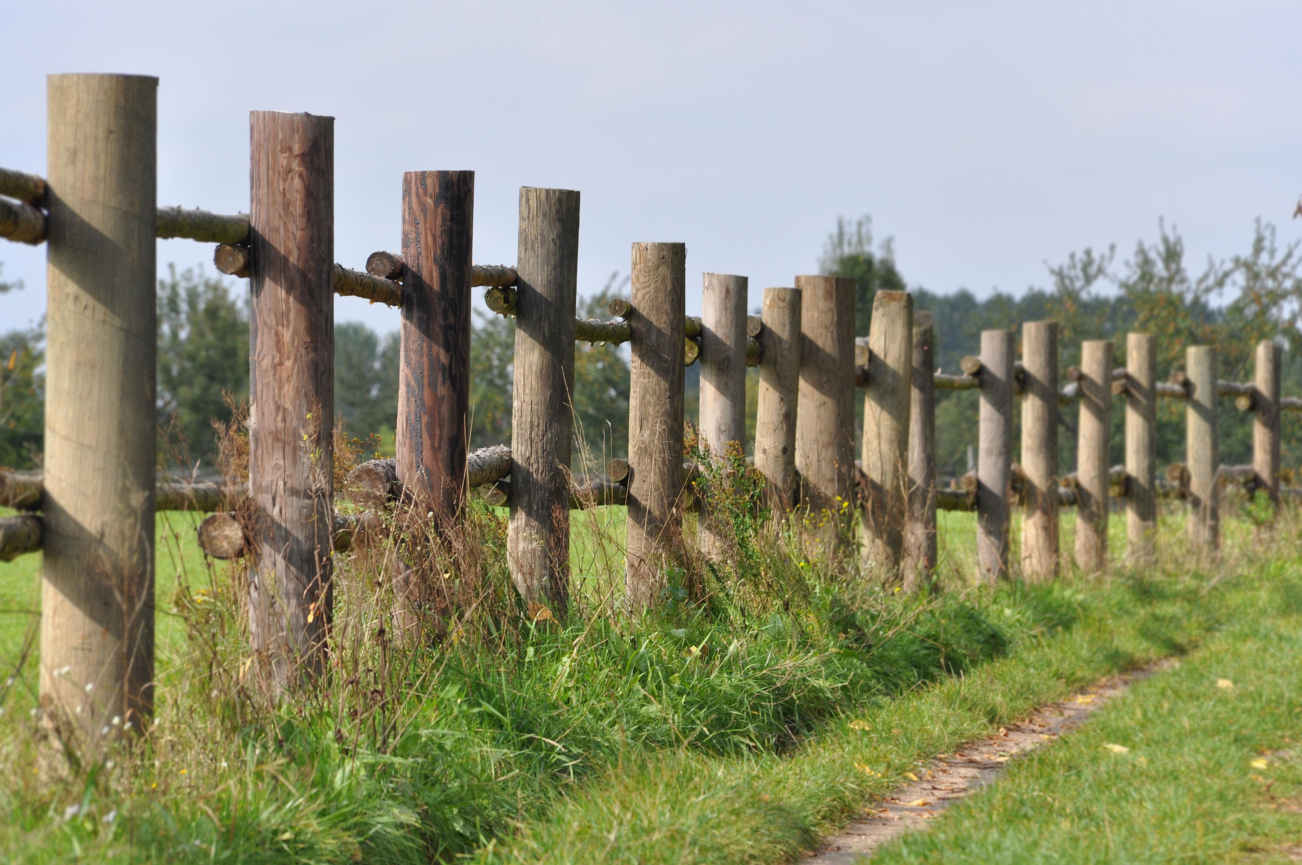 Kostenlose foto Landschaft Natur Zaun Holz Wiese Mauer