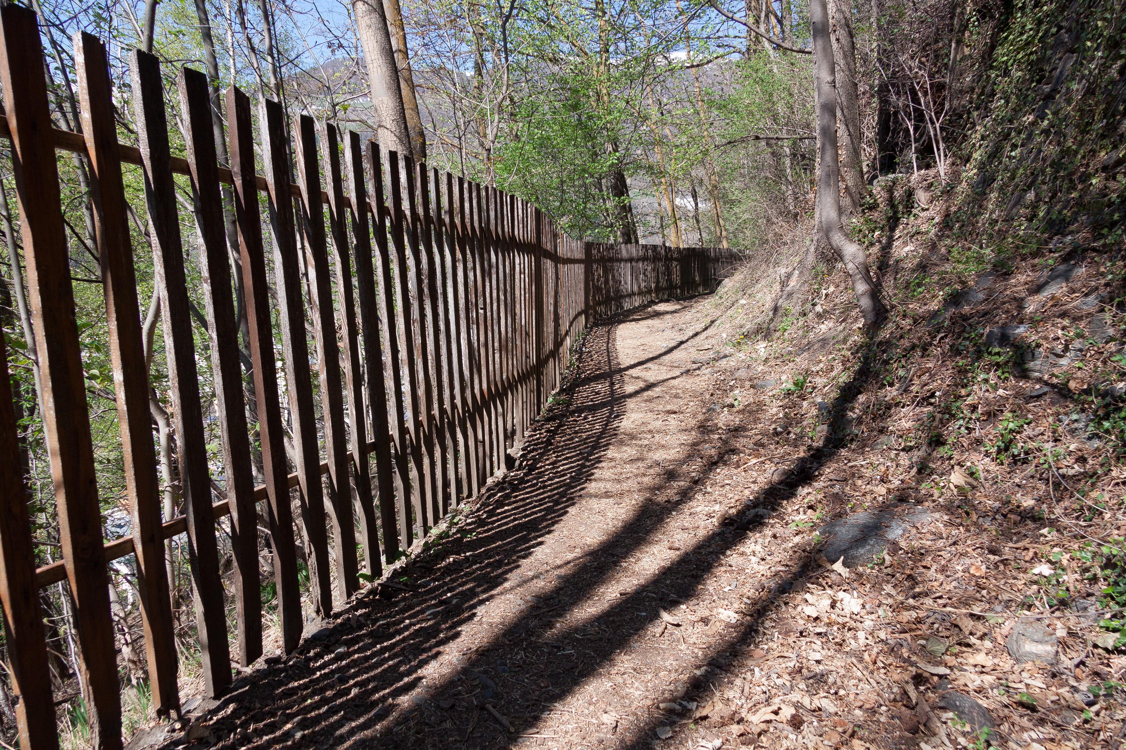 free images landscape nature track trail bridge transport spring shadow trees mood. Black Bedroom Furniture Sets. Home Design Ideas
