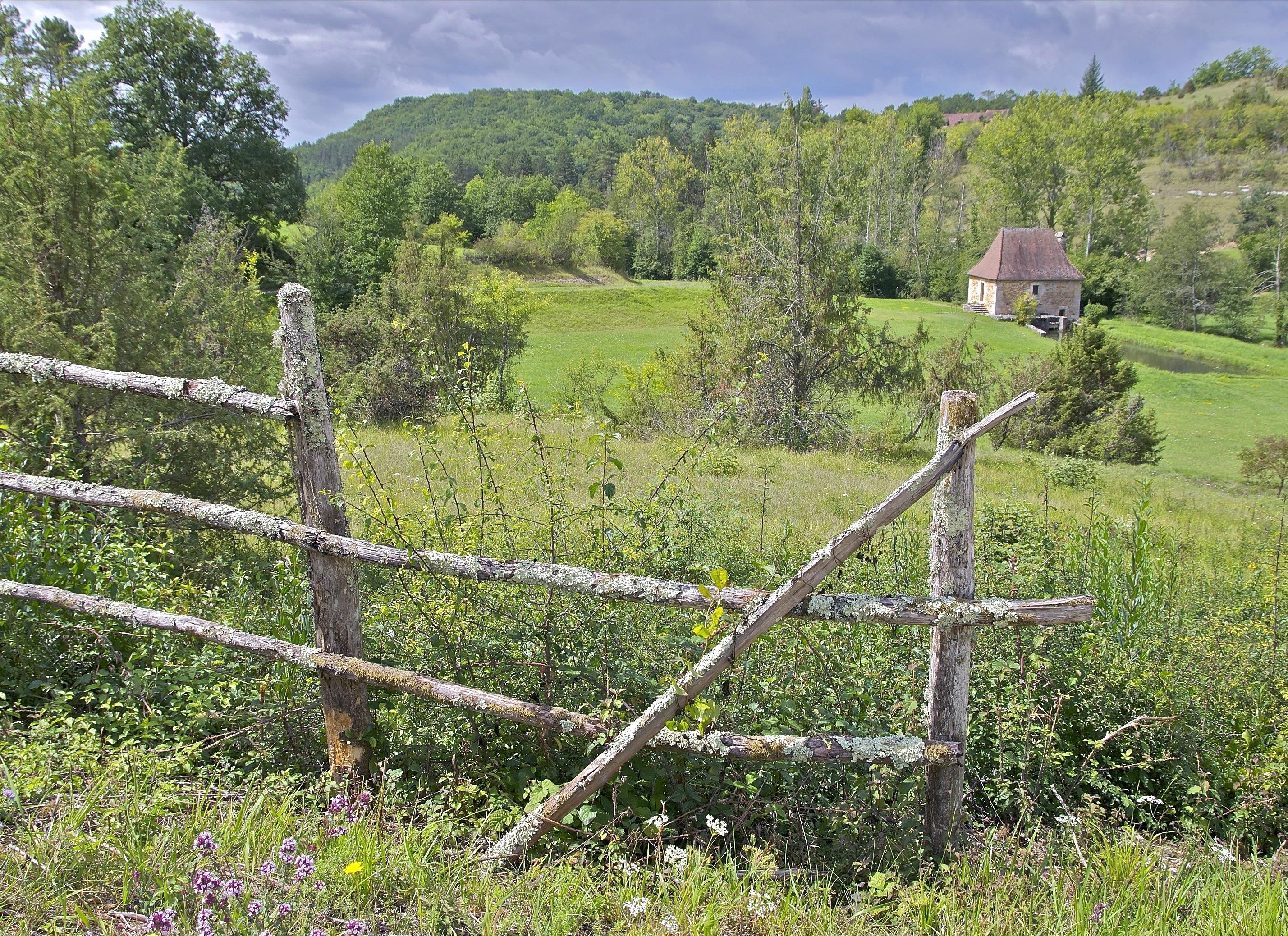 Сосет через забор на ферме фото 279-279