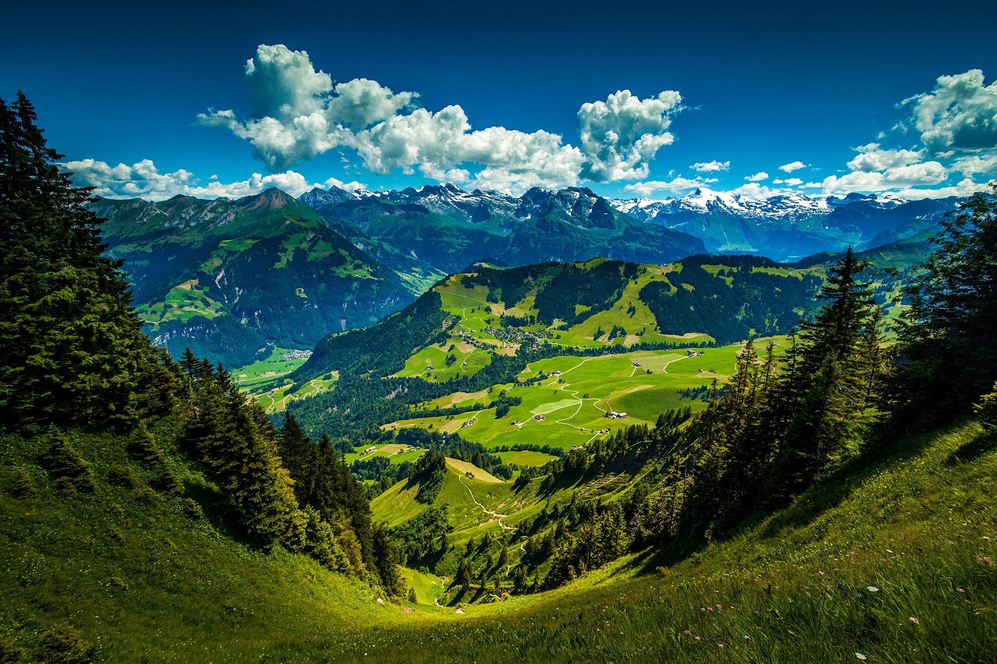 Gambar Pemandangan Hutan Gurun Awan Langit Padang Rumput