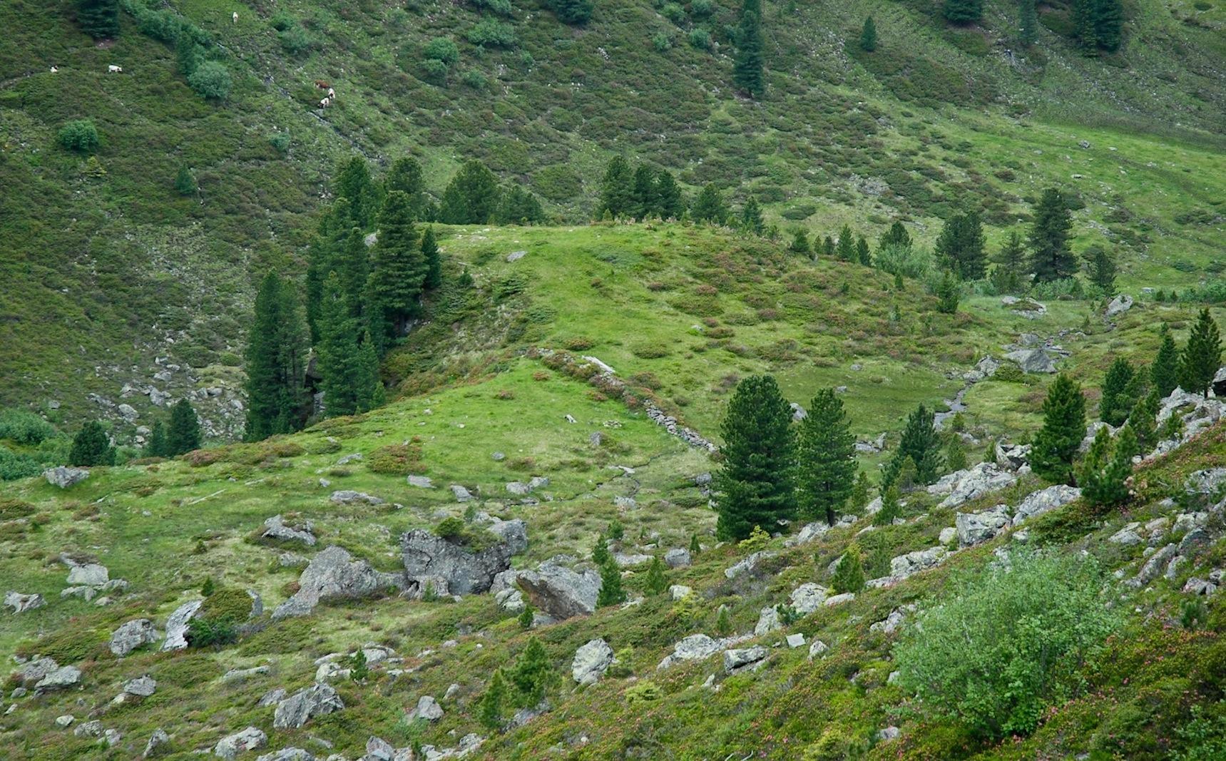 Free images landscape nature grass wilderness trail for Terrace landform
