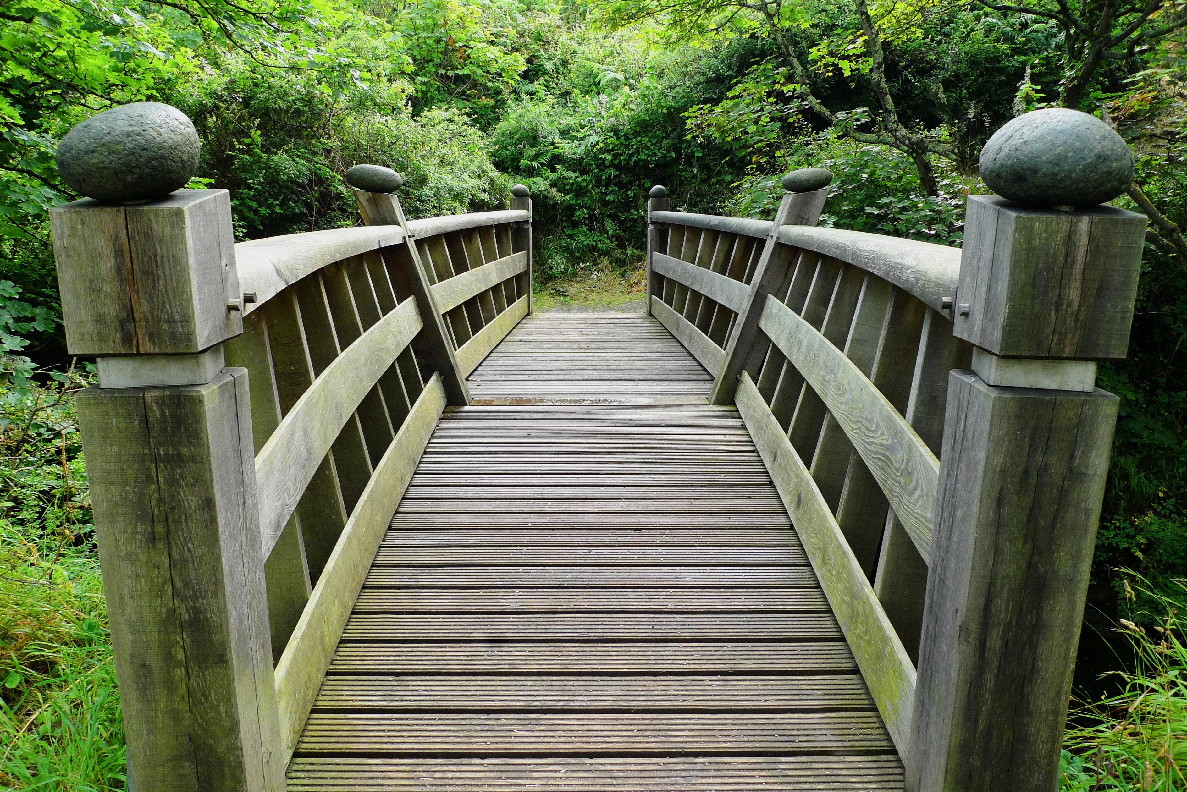 Fotos gratis paisaje naturaleza bosque al aire libre for Jardin al aire libre de madera deco