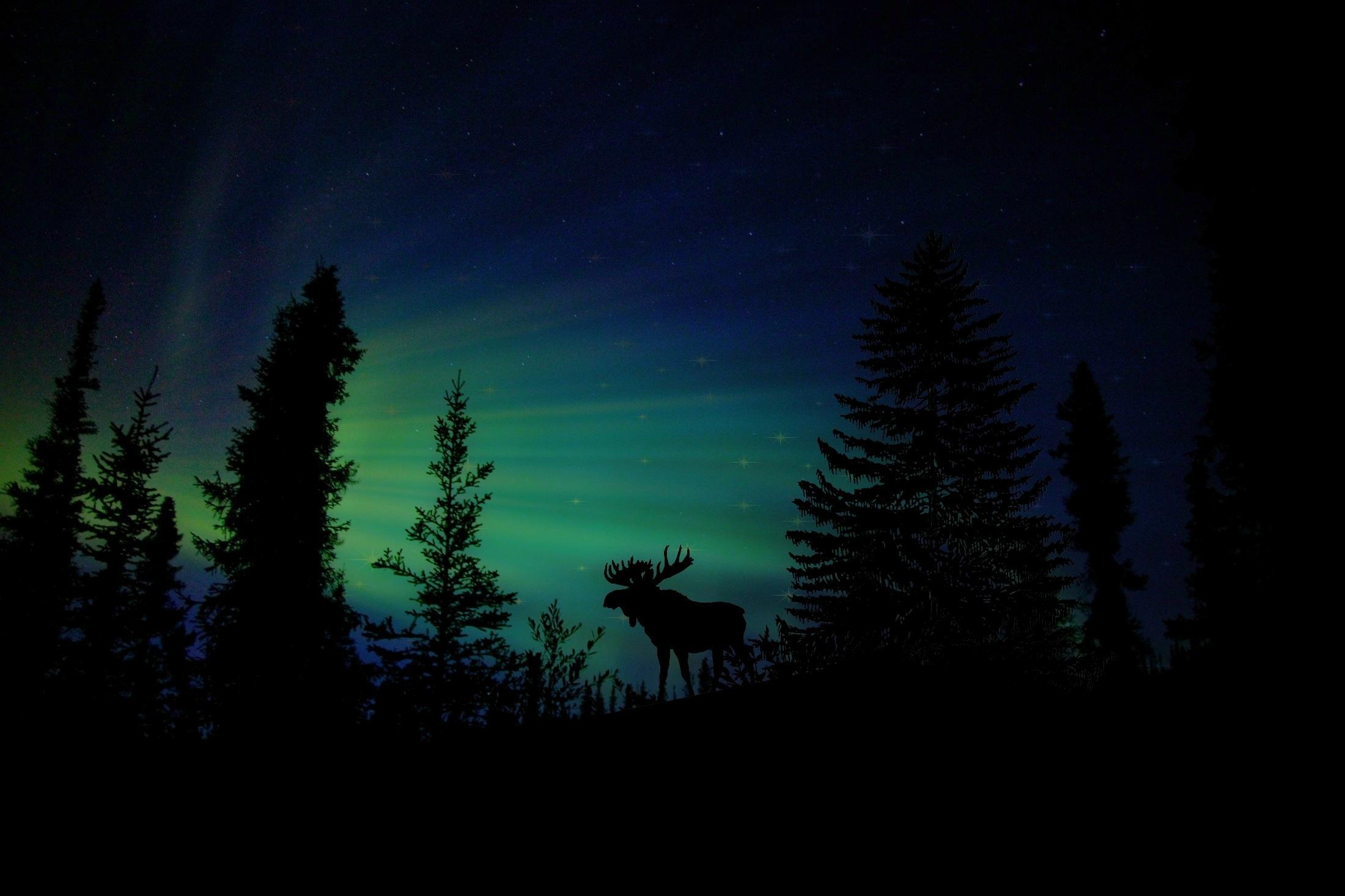 89 Gambar Alam Malam Hari Terbaik