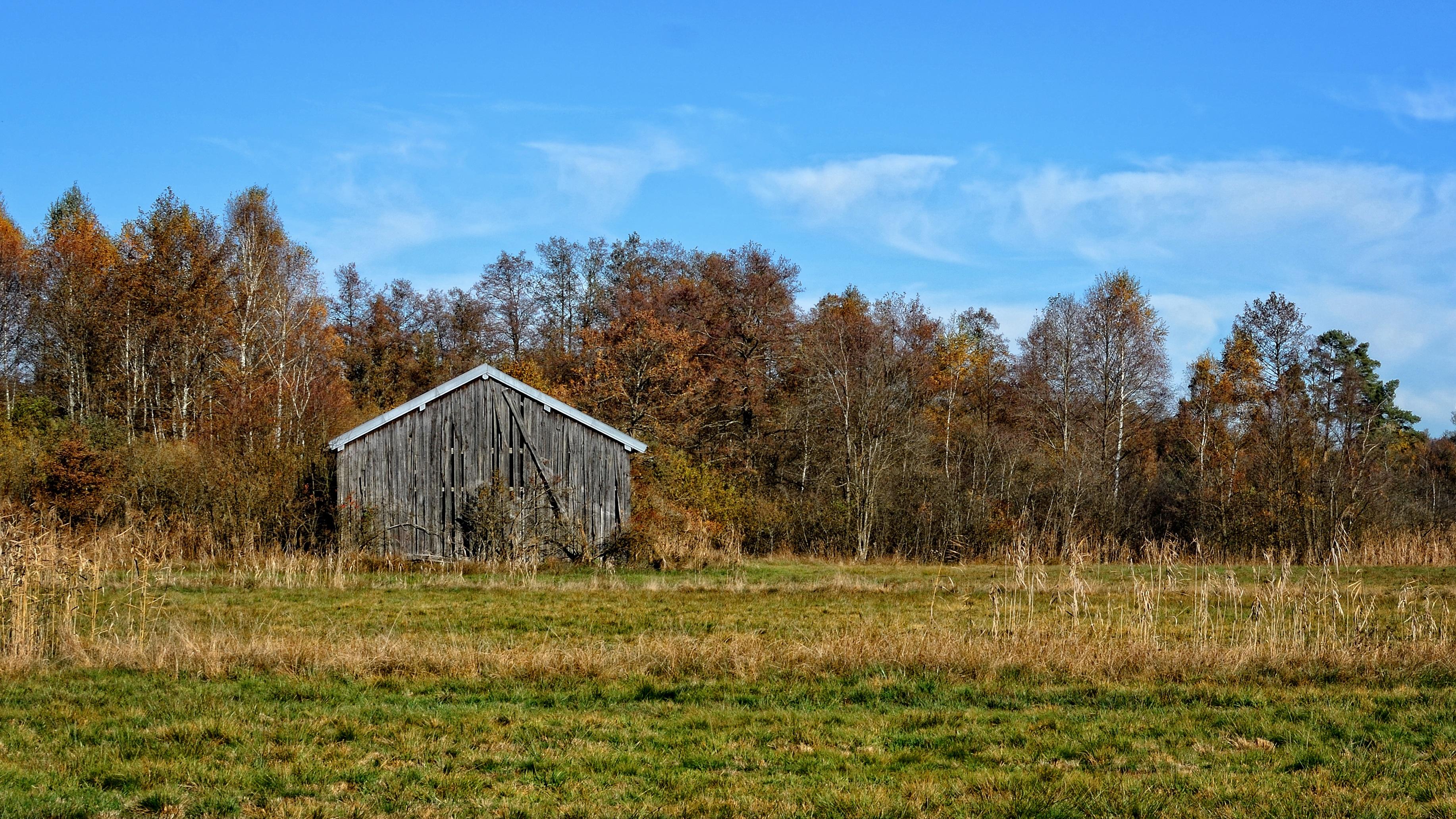 Kostenlose foto : Landschaft, Natur, Wald, Wildnis, Feld, Bauernhof ...