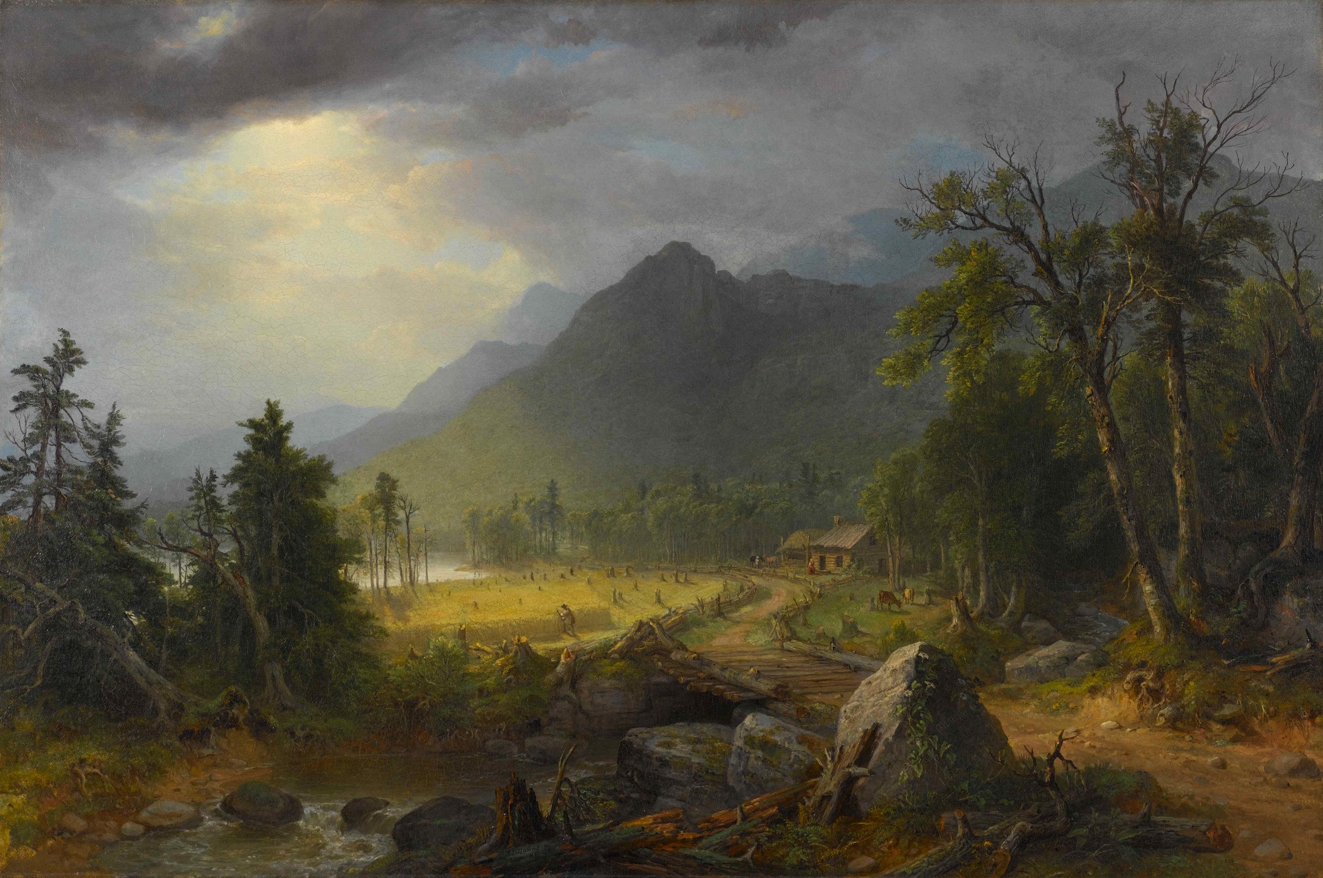 Gambar Pemandangan Hutan Gurun Gunung Langit Kabut