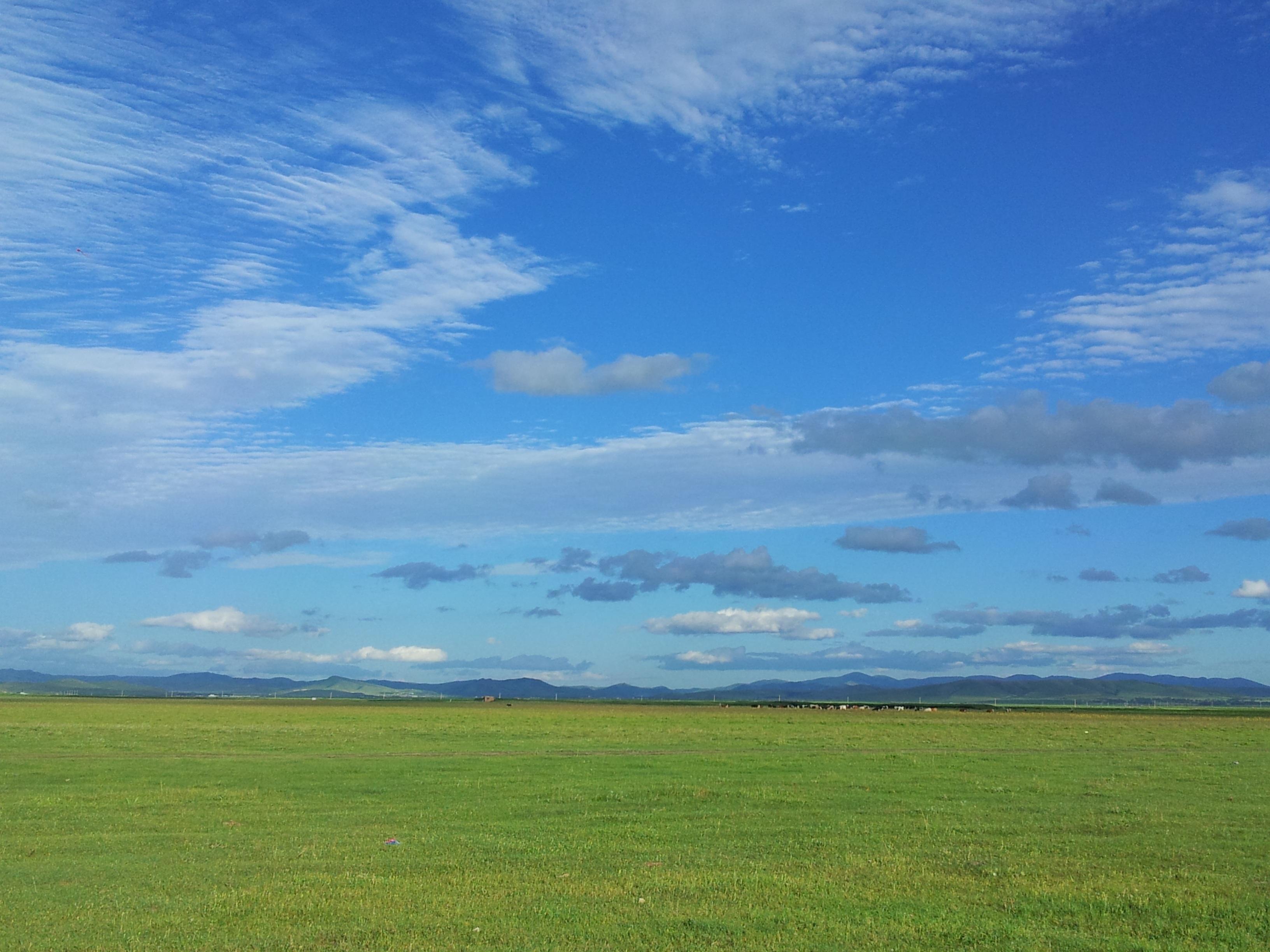 чистое небо и луг картинки мансарде