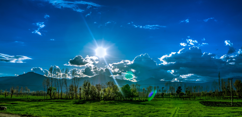 Обои высокая трава, сумерки, облака. Природа foto 11