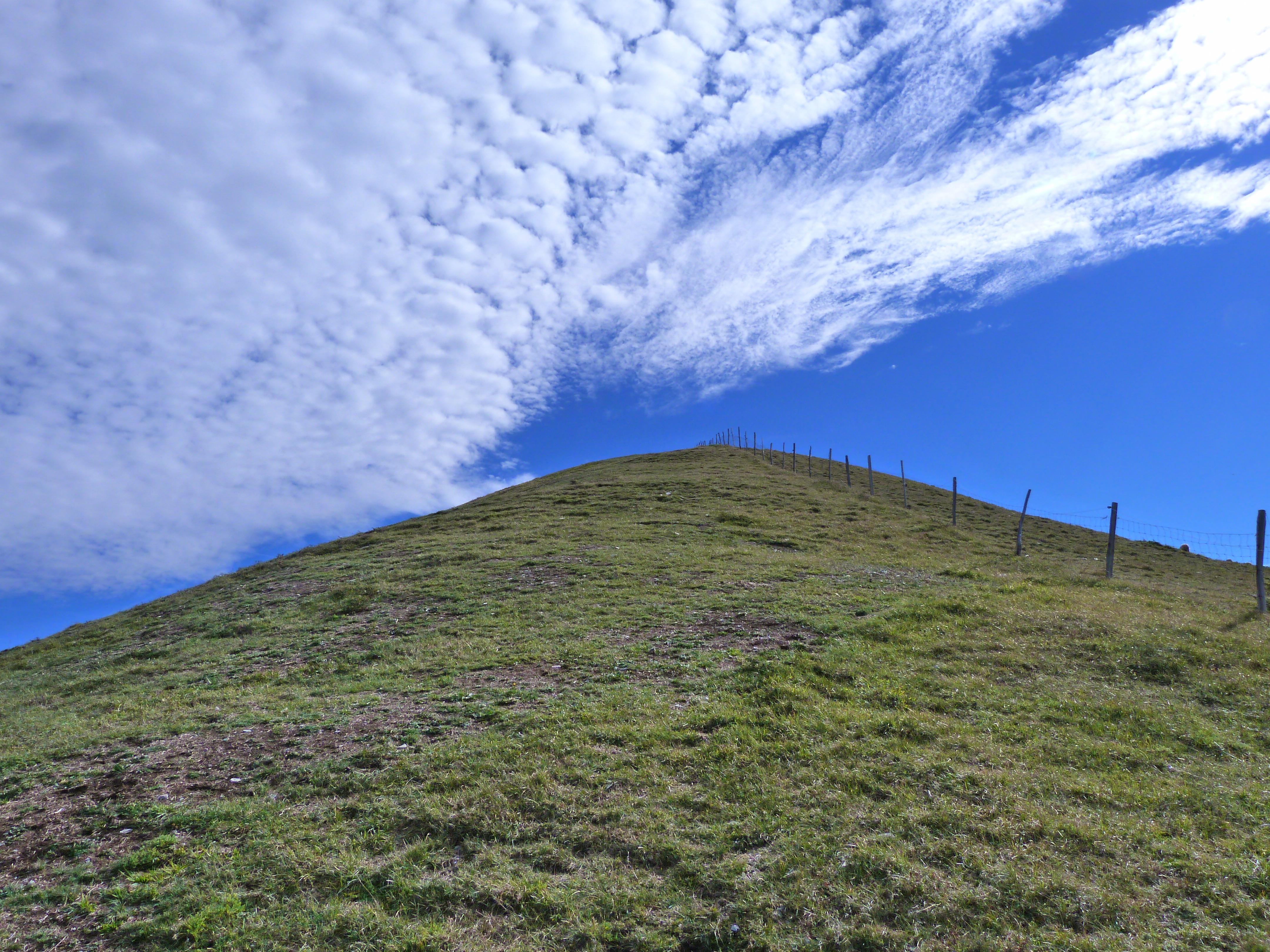 Free Images : landscape, nature, grass, horizon, wilderness
