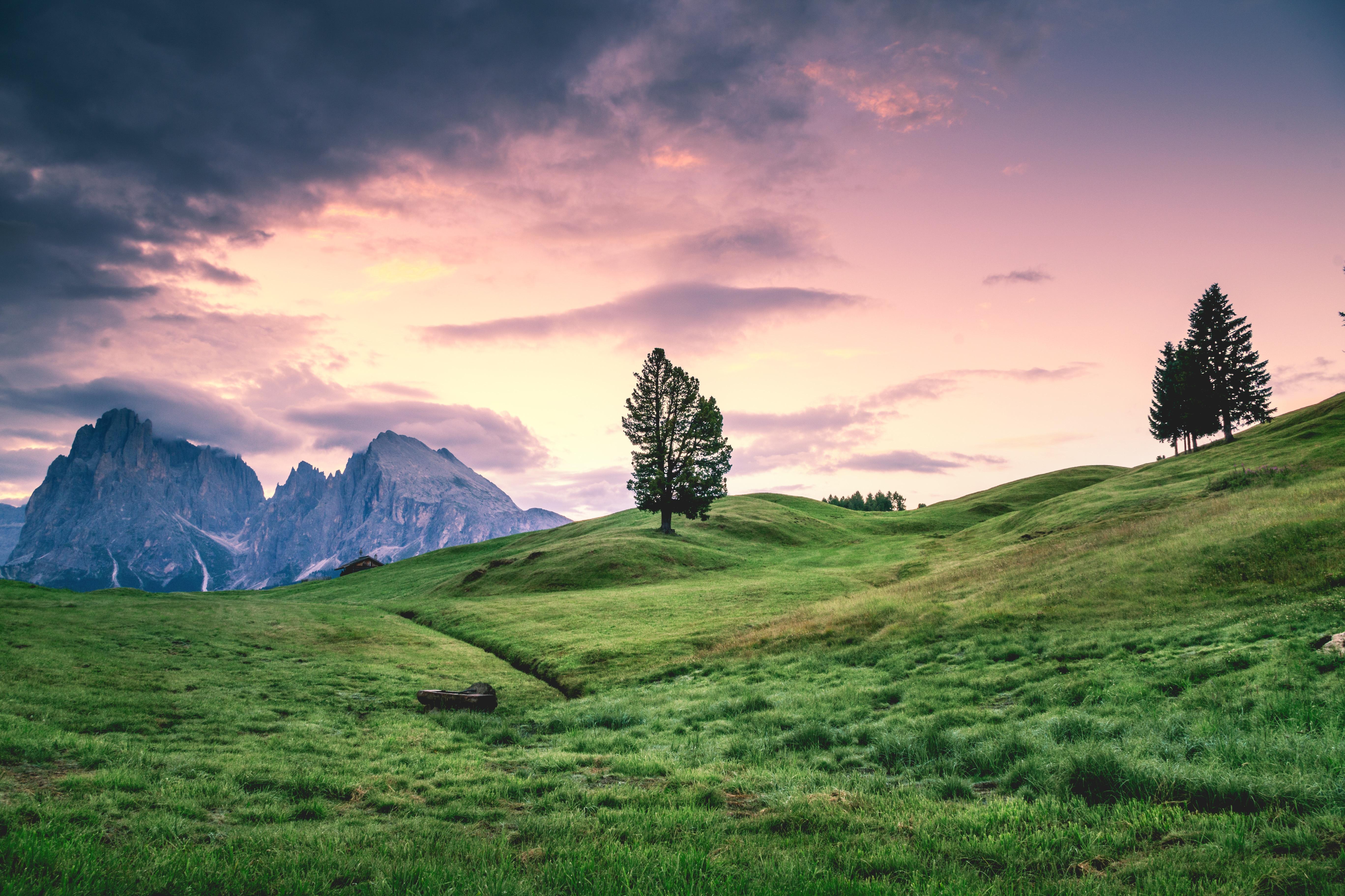 Unduh 81+ Wallpaper Pemandangan Alam Rumput HD Gratid