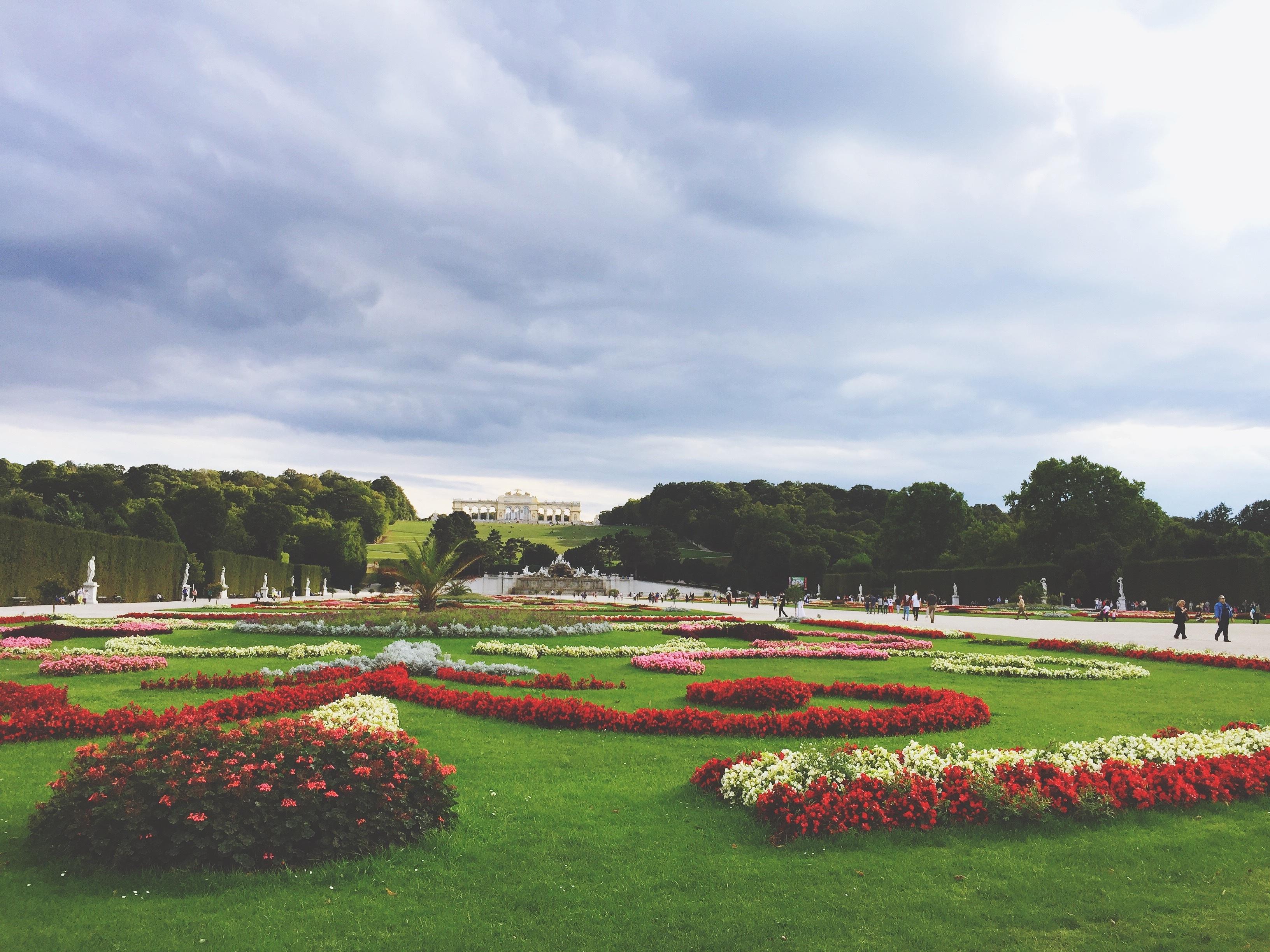 Kostenlose foto landschaft natur gras draussen struktur pflanze feld bauernhof rasen - Gartengestaltung bauernhof ...