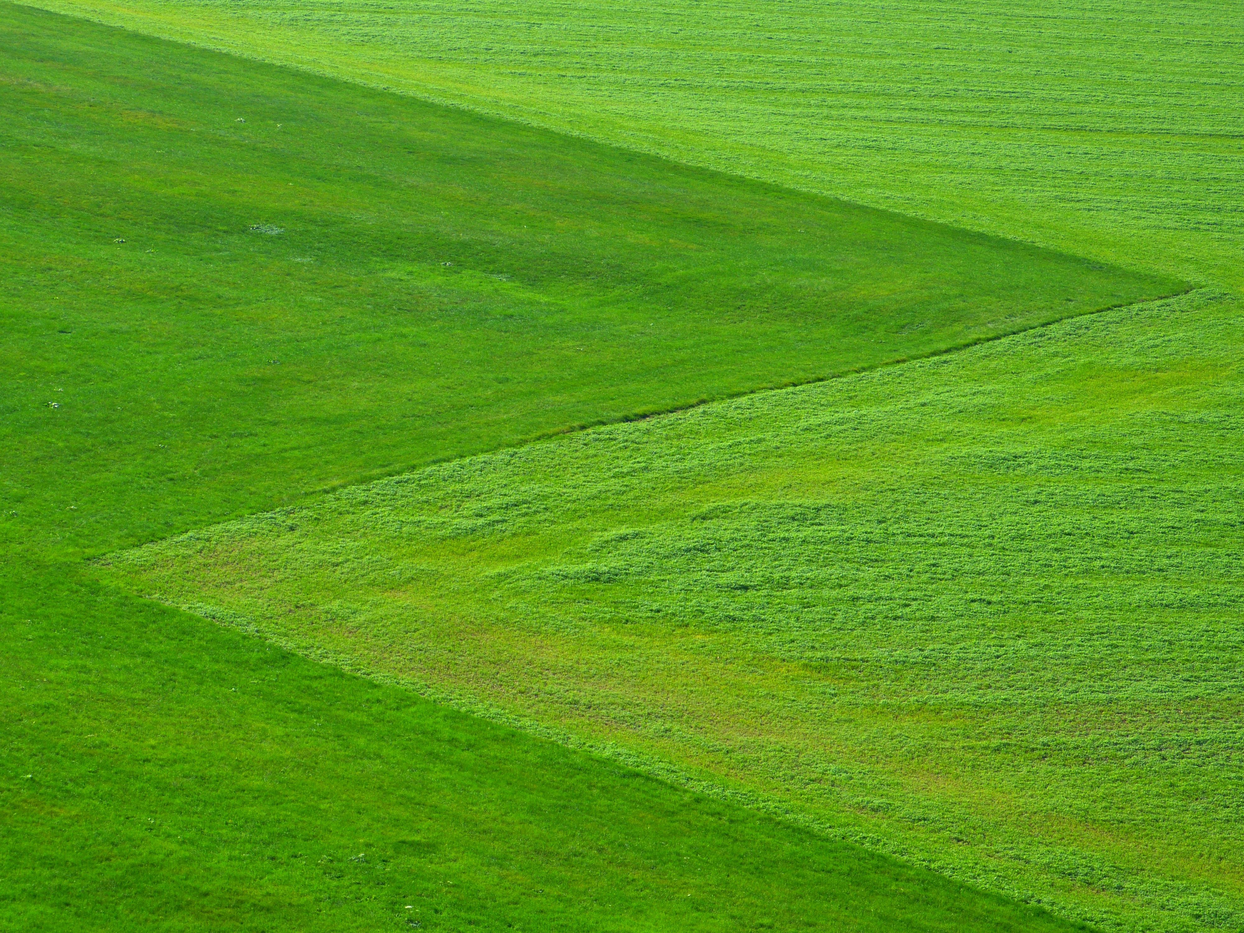 Free Images landscape nature sky farm lawn meadow prairie