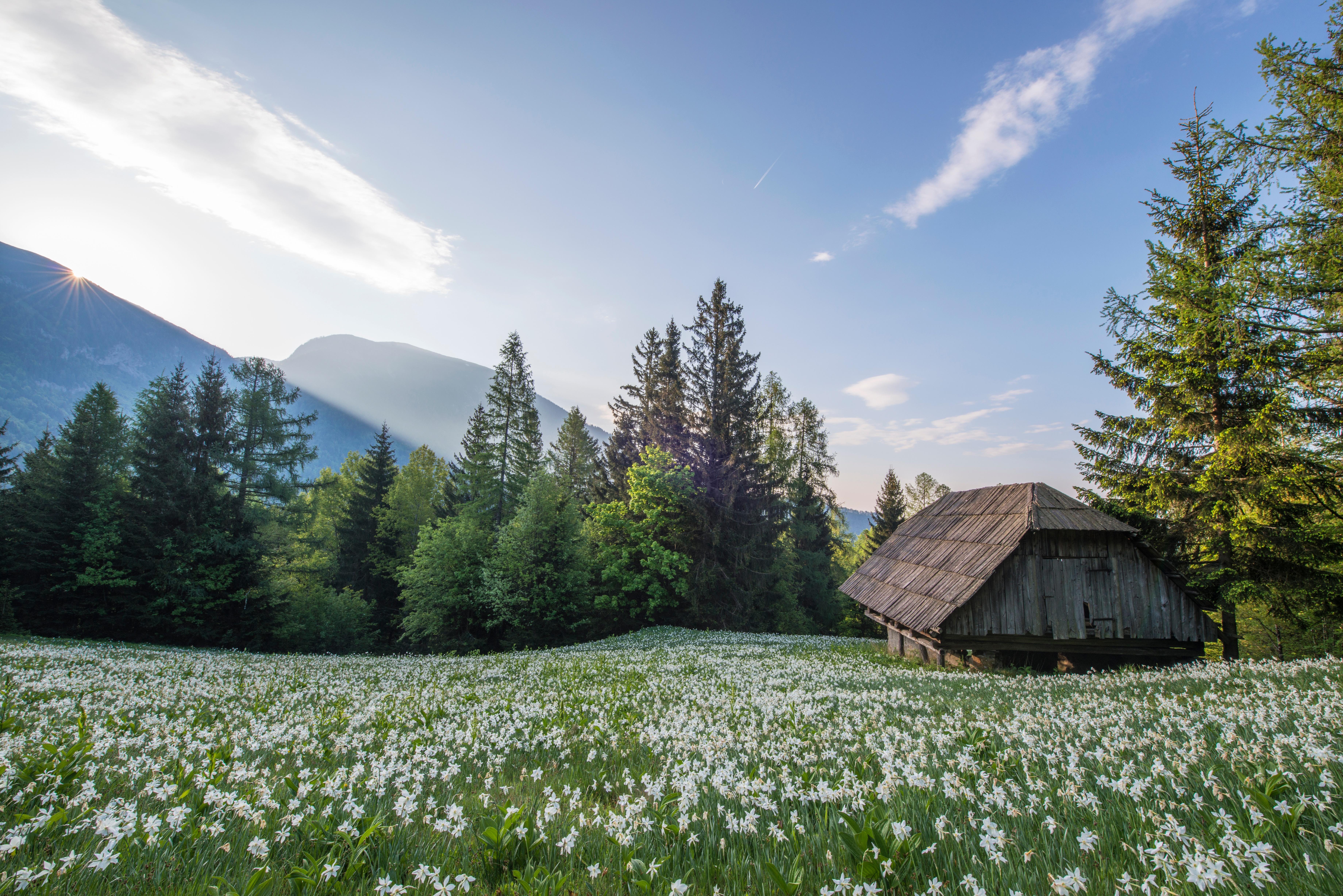 песни новой красивые картинки с деревенской природой и домами стал после