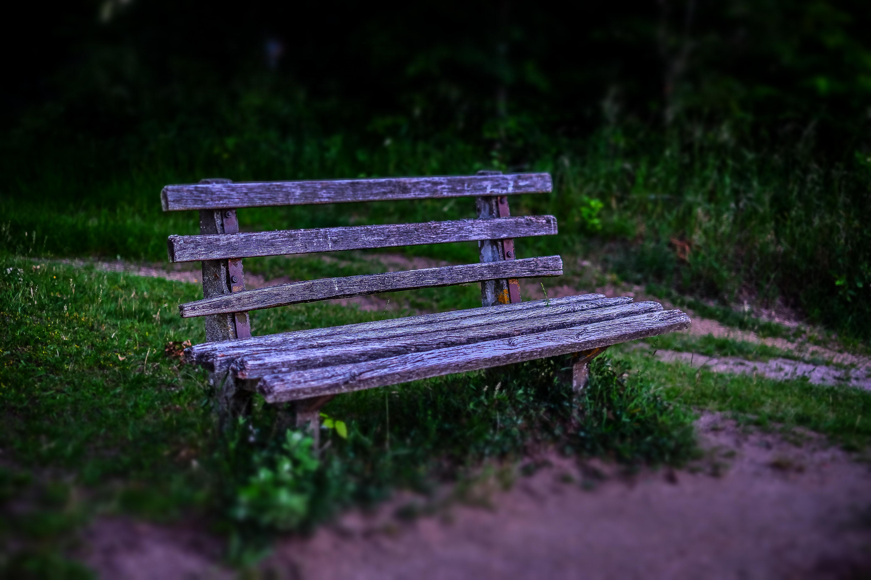 Fotos gratis paisaje naturaleza c sped madera banco - Mueble banco asiento ...