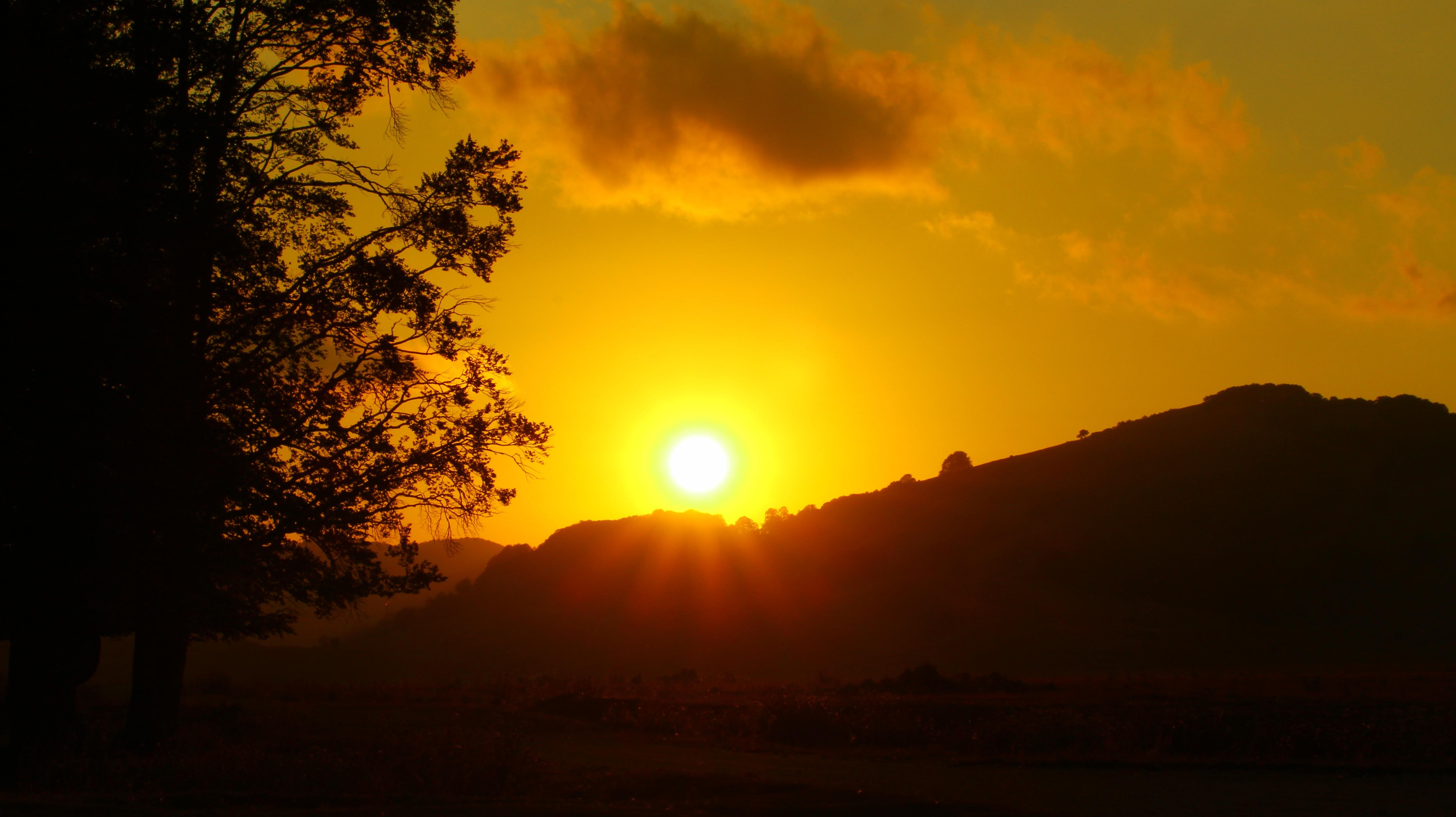 Free Images Landscape Nature Horizon Cloud Sun