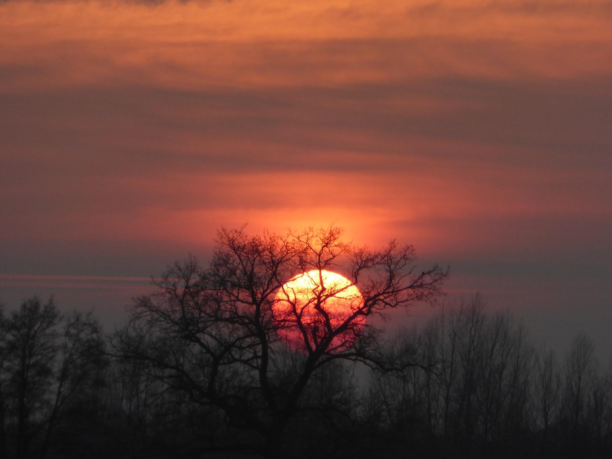 Gambar Pemandangan Alam Horison Awan Matahari Terbit