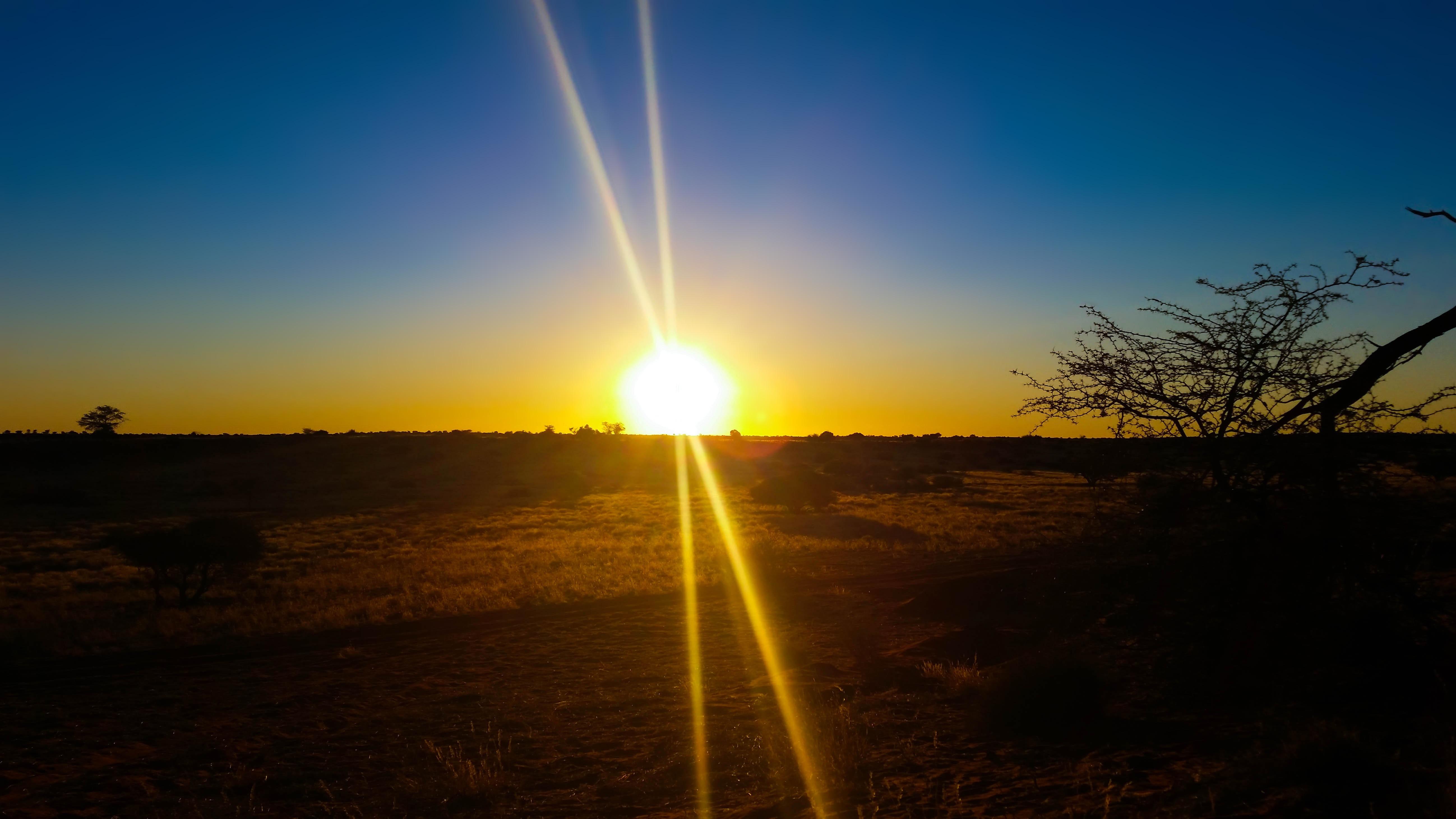 Картинки лучей солнце