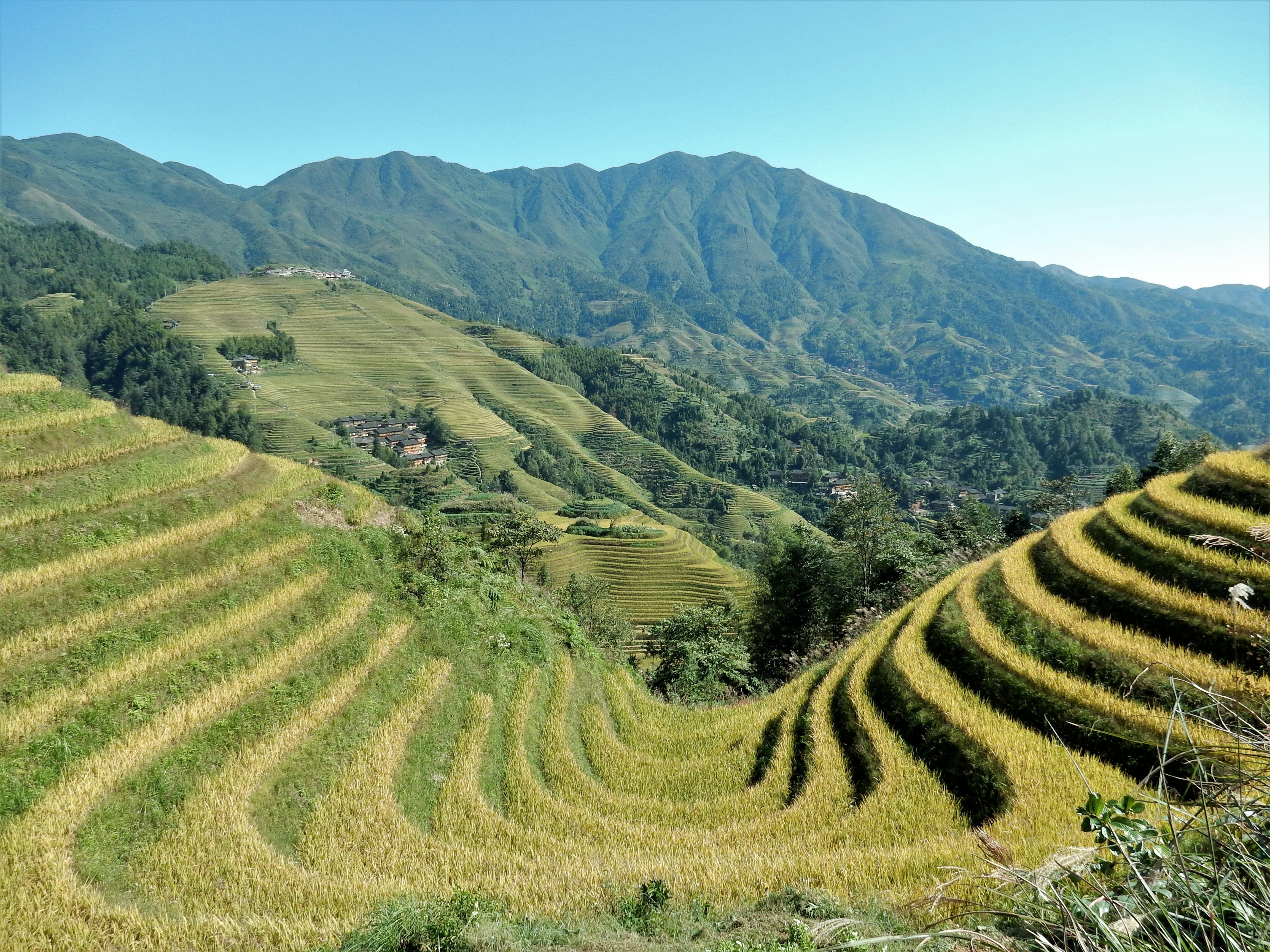 Fotos Gratis Paisaje Naturaleza Montaña Campo Pradera