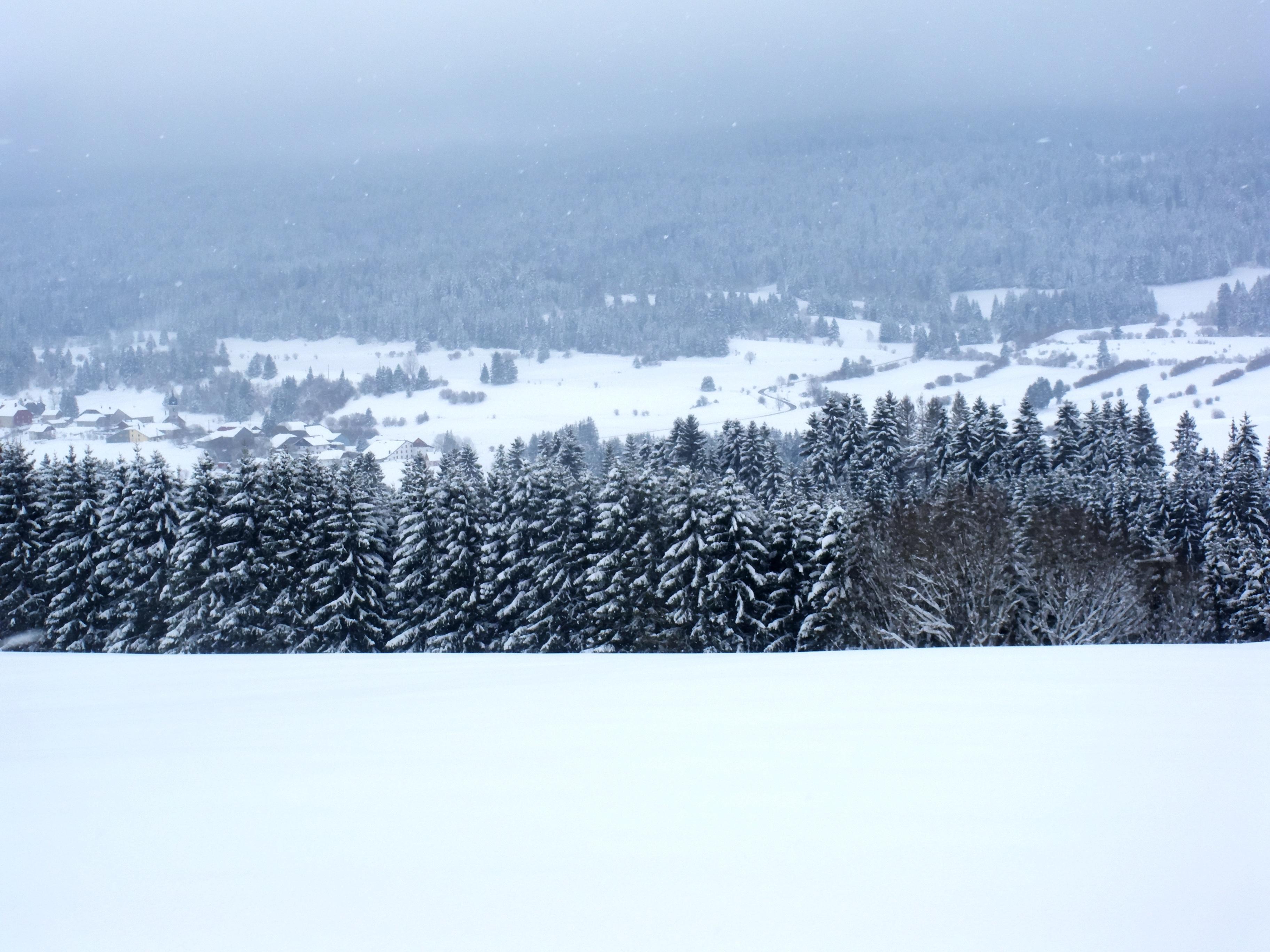 hình ảnh : phong cảnh, thiên nhiên, lạnh, mùa đông, đám mây, Sương mù, sương mù, trắng, sương giá, dãy núi, Thời tiết, cây thông, Mùa, Phong cảnh mùa đông, ...