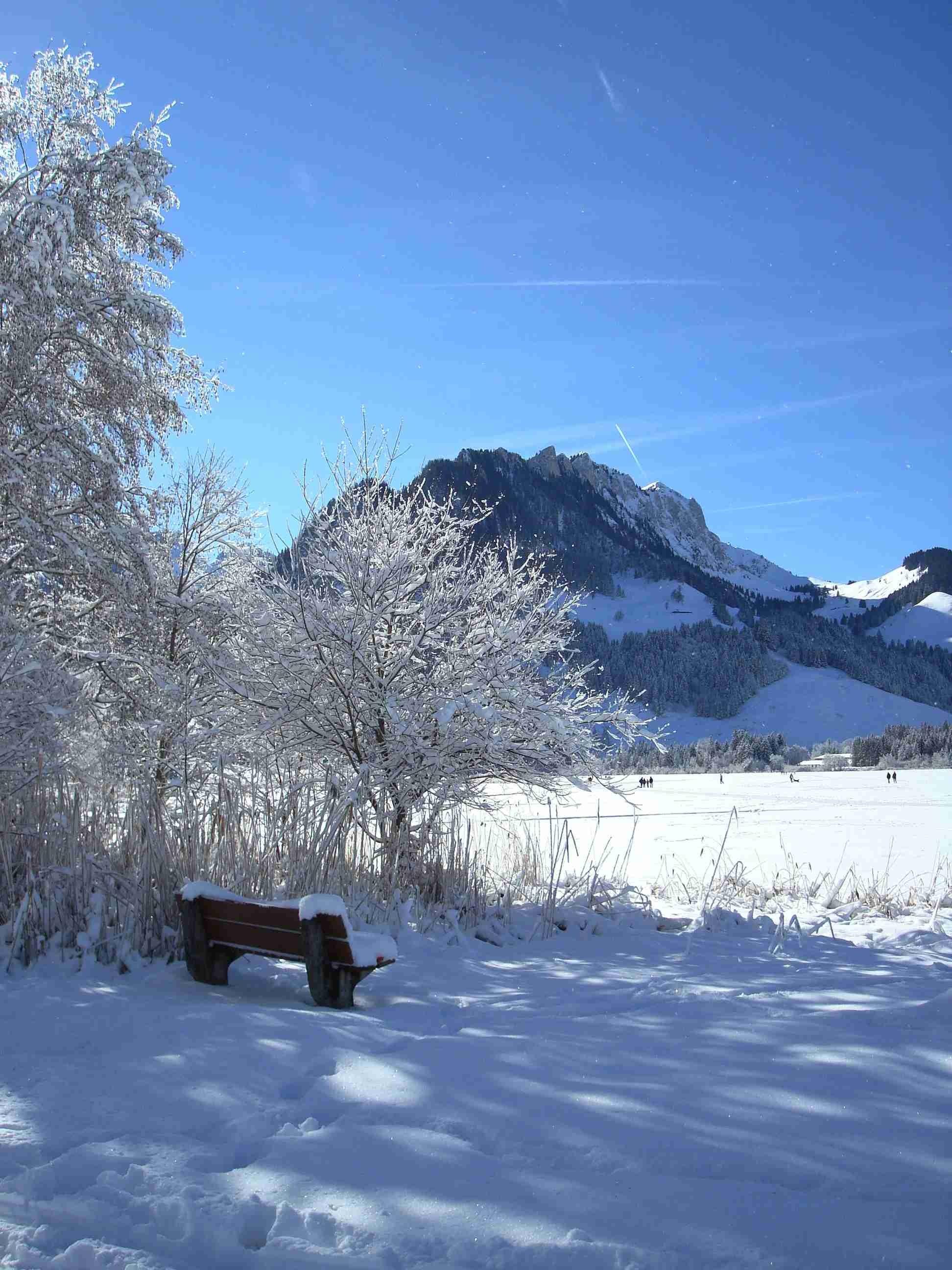 Immagini belle paesaggio natura la neve inverno for Immagini natura gratis