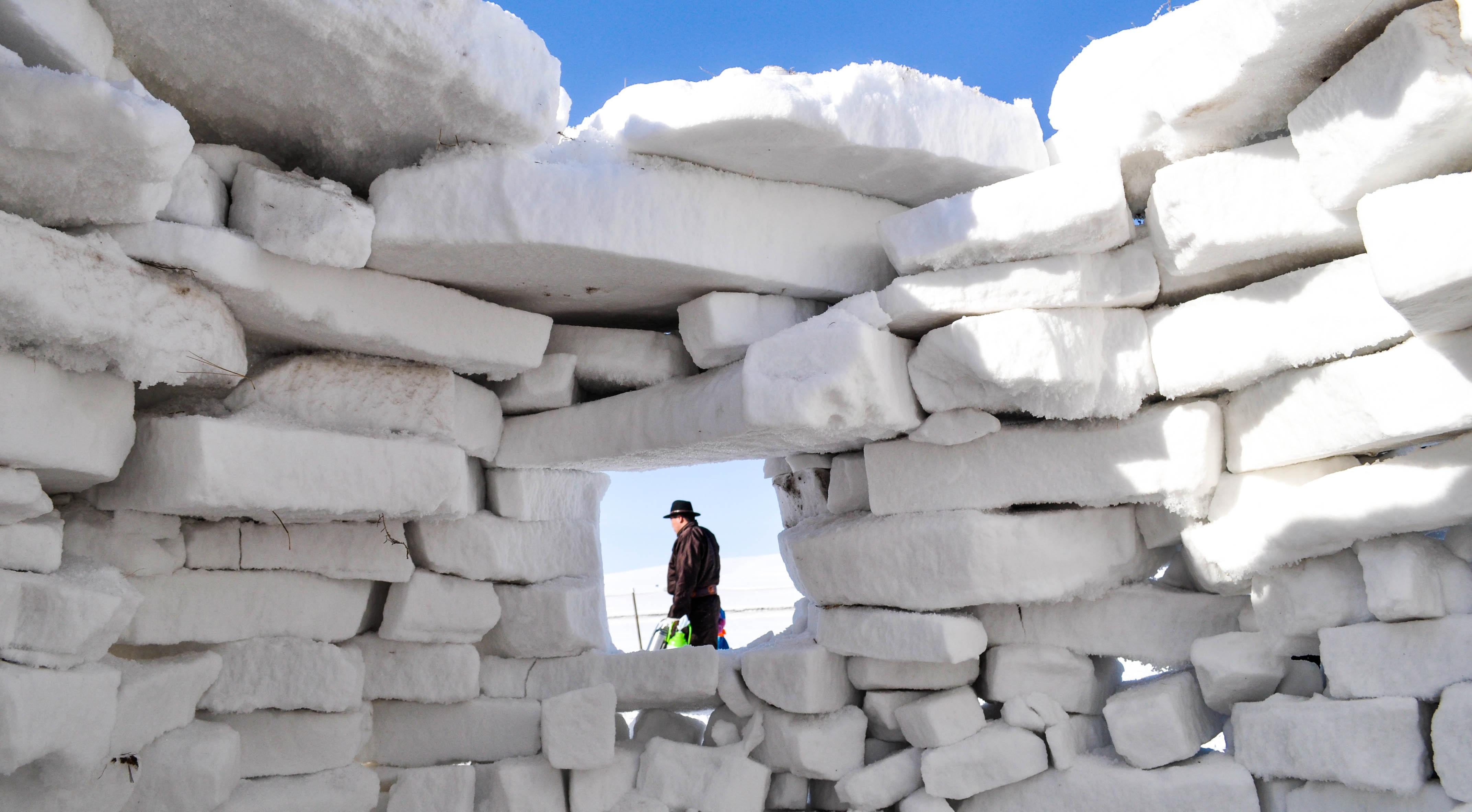 чаще стена снега картинки как вам