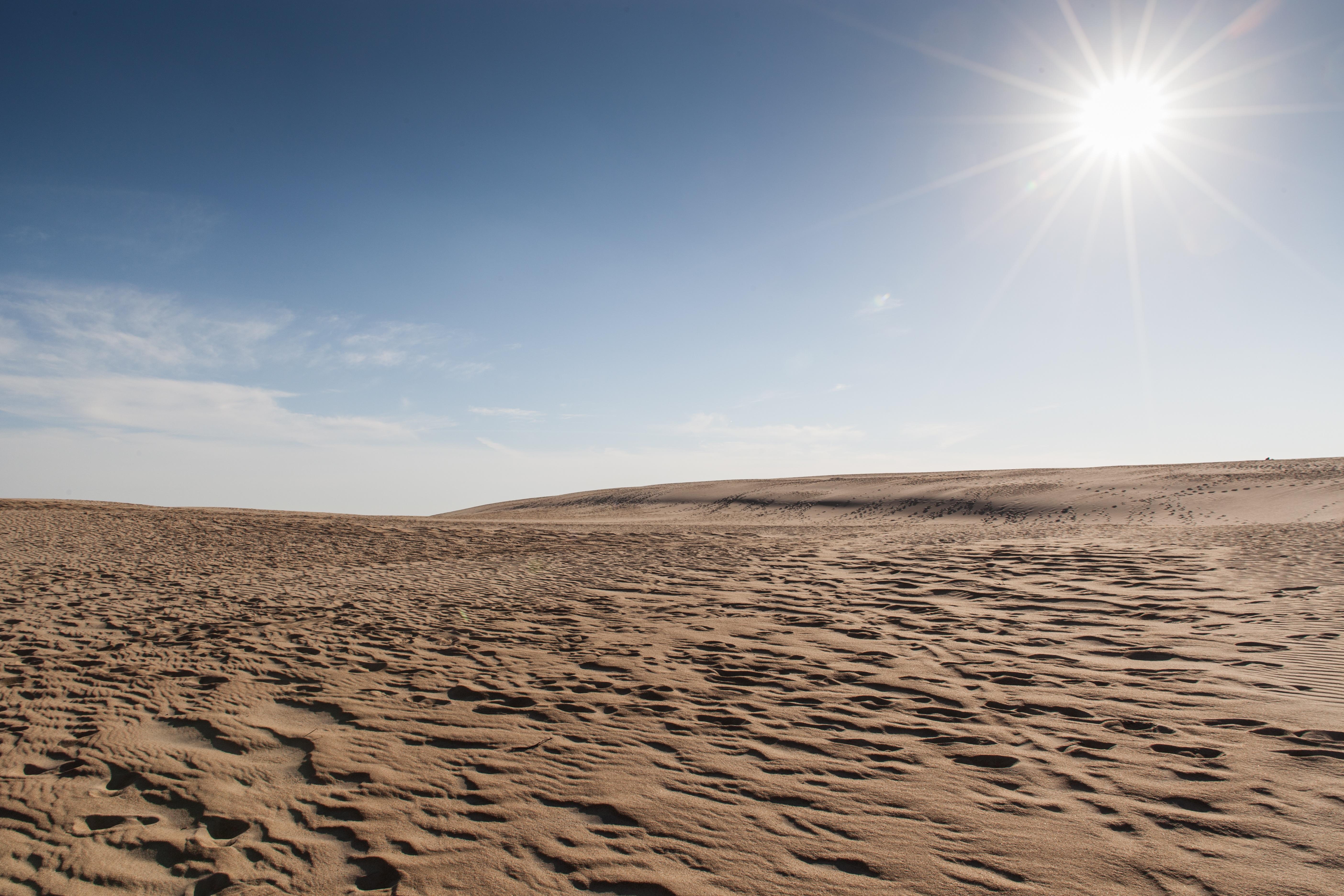картинки небо пустыни лекарственный
