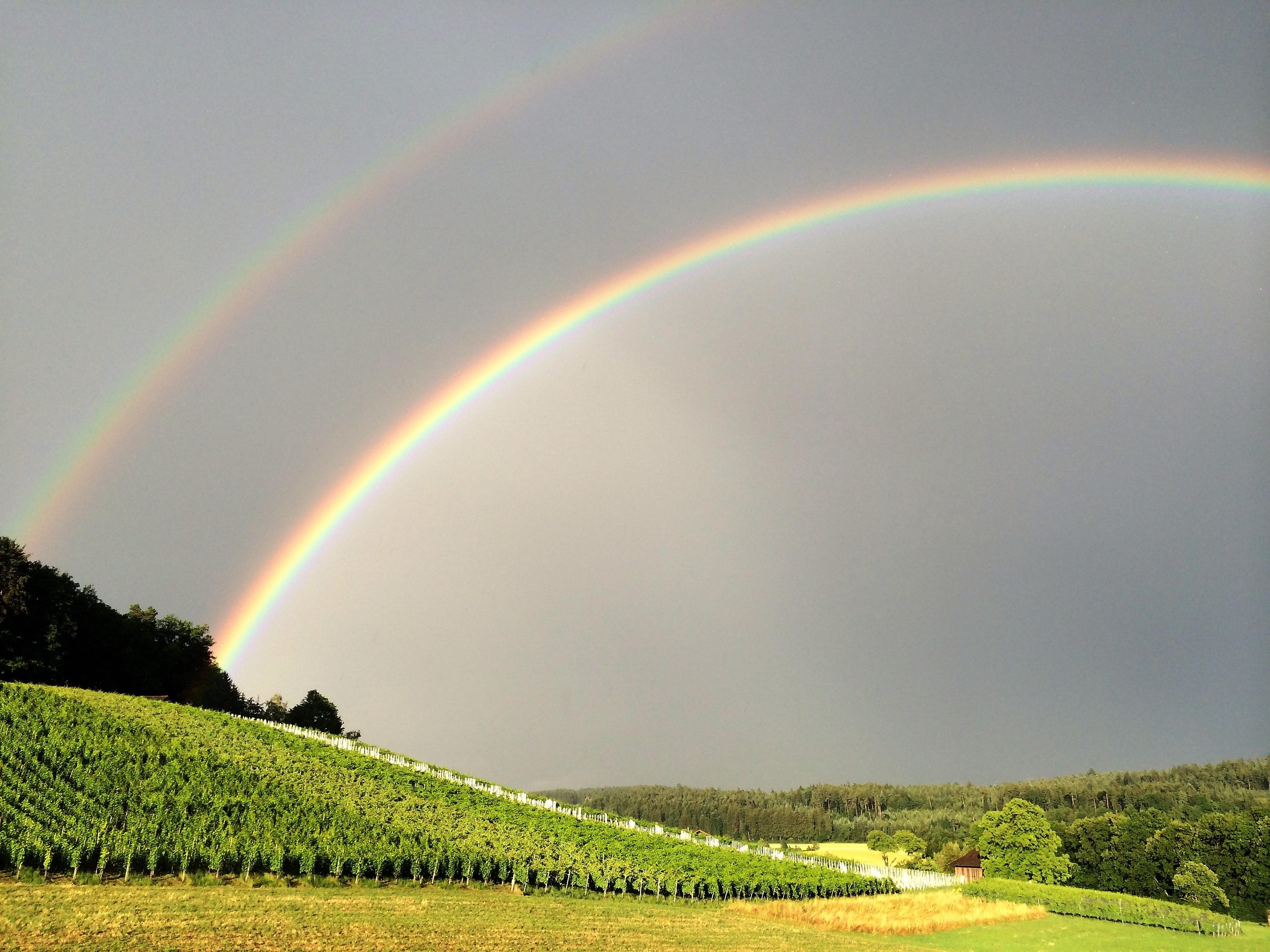 ему картинка радуга на небе и солнце далее путь должен