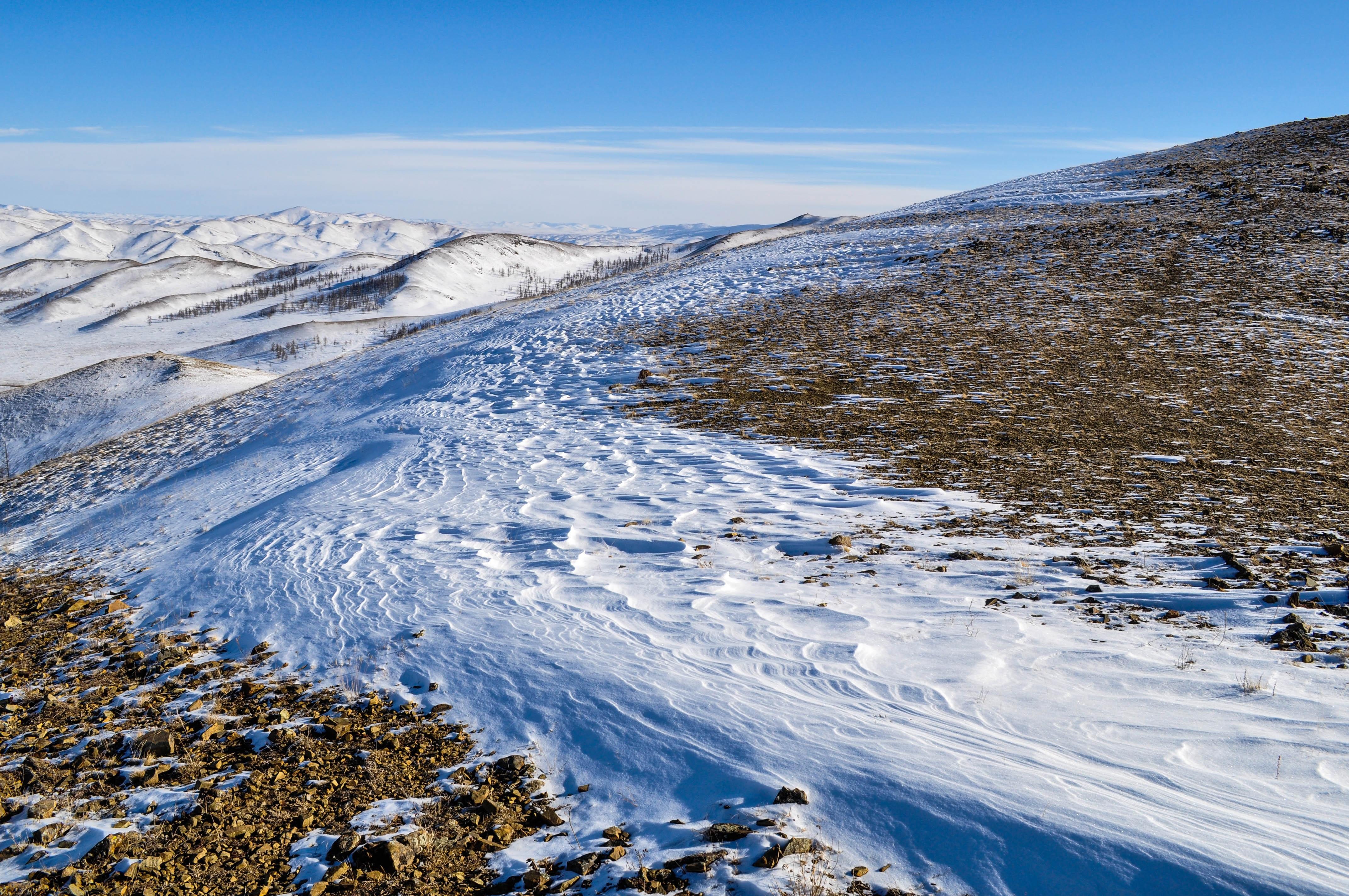 картинки арктической пустыни летом и зимой другой стороны, экзотика
