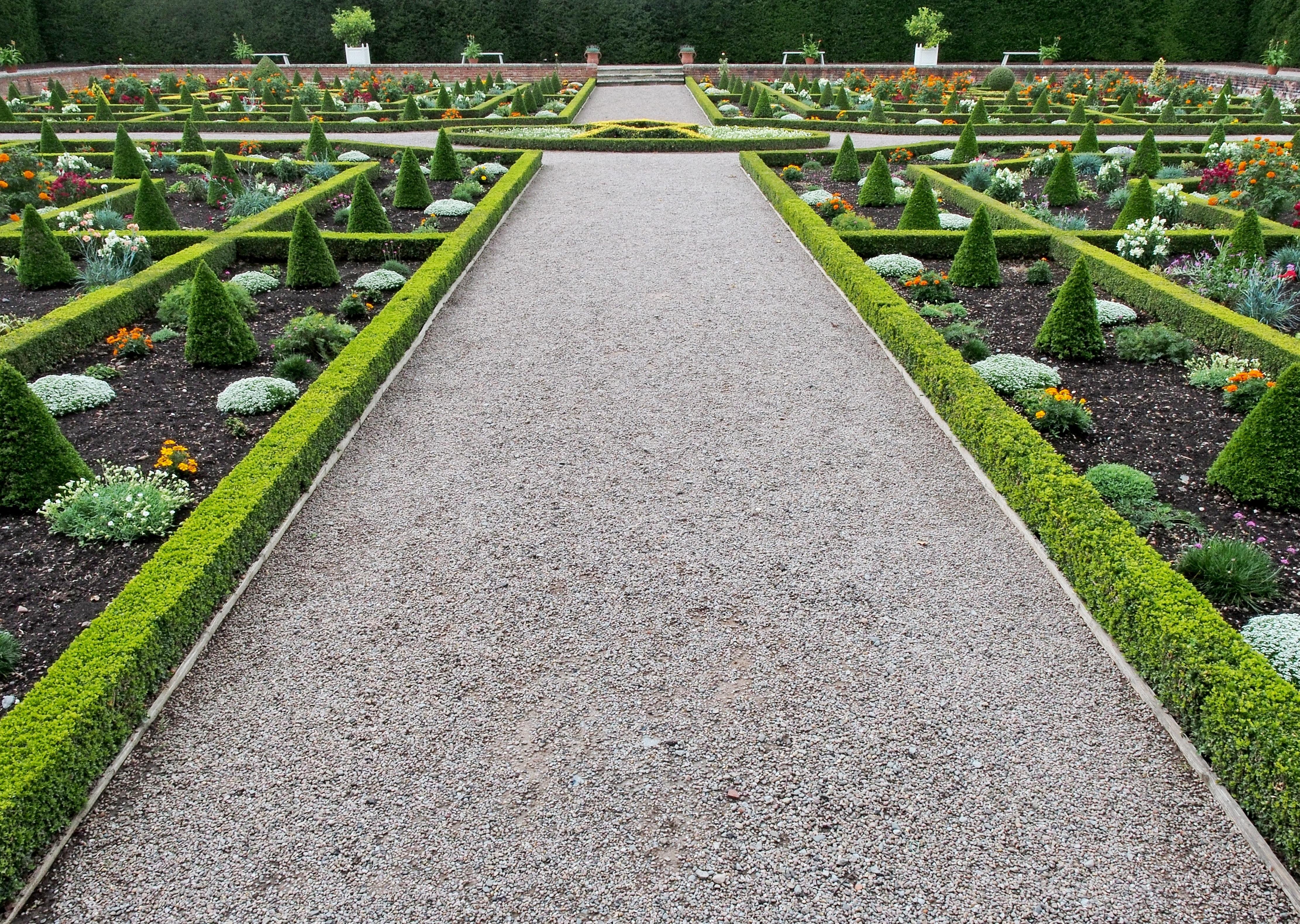 Images Gratuites : paysage, chemin, herbe, de plein air, plante ...