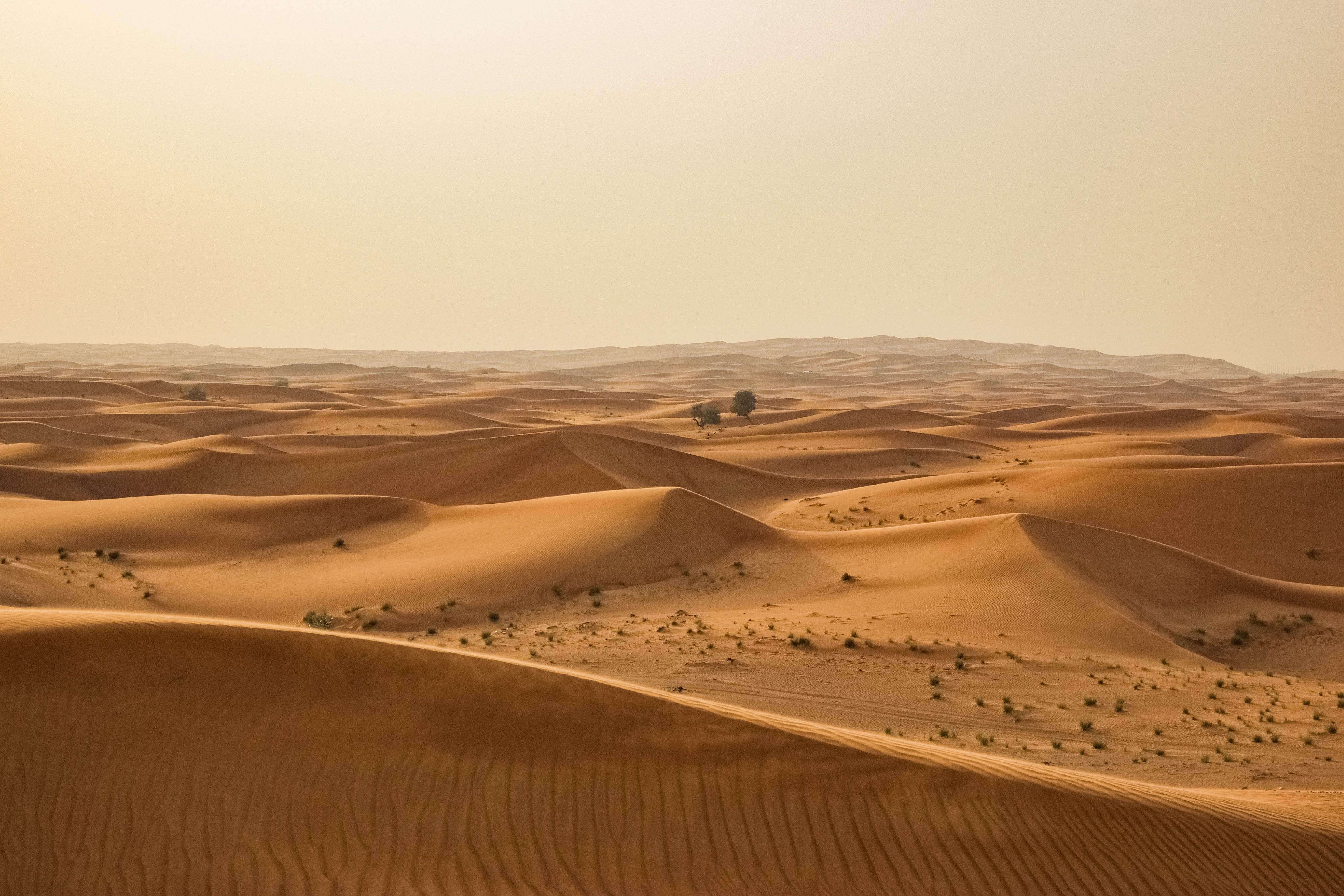 Картинка африка пустыня