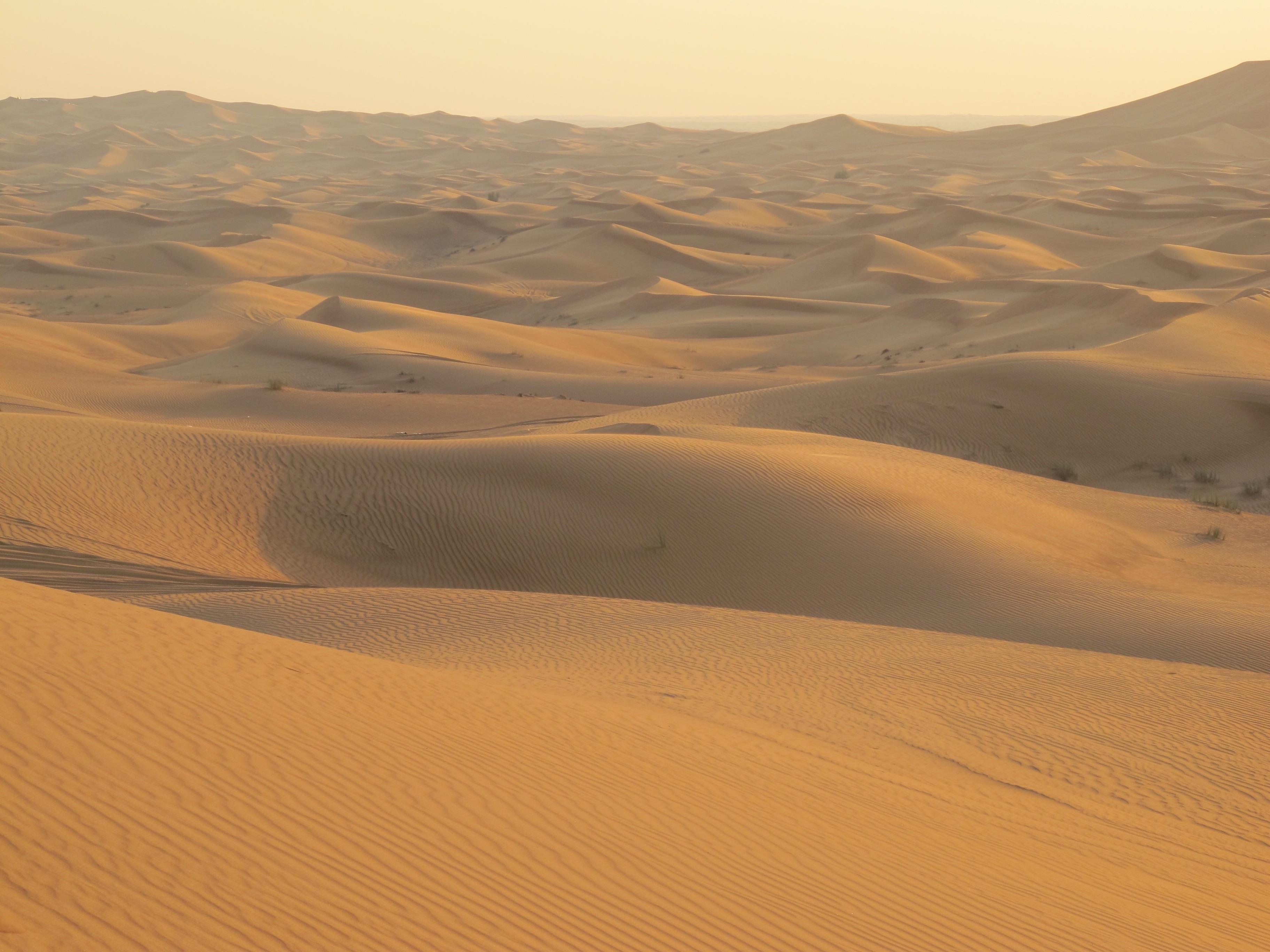 переключения песчаные пустыни картинки симпатичные