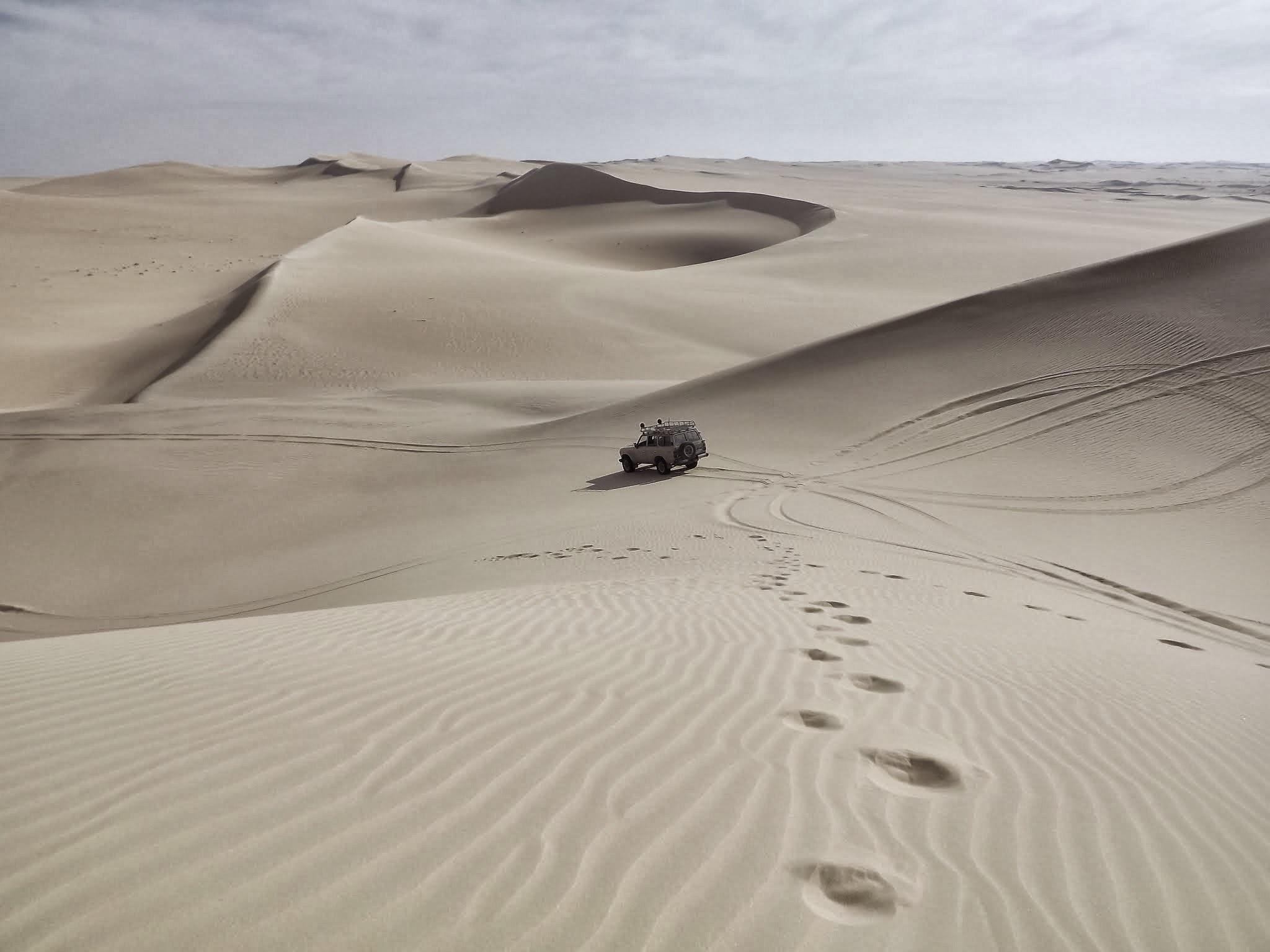Free Images : landscape, desert, dune, jeep, habitat