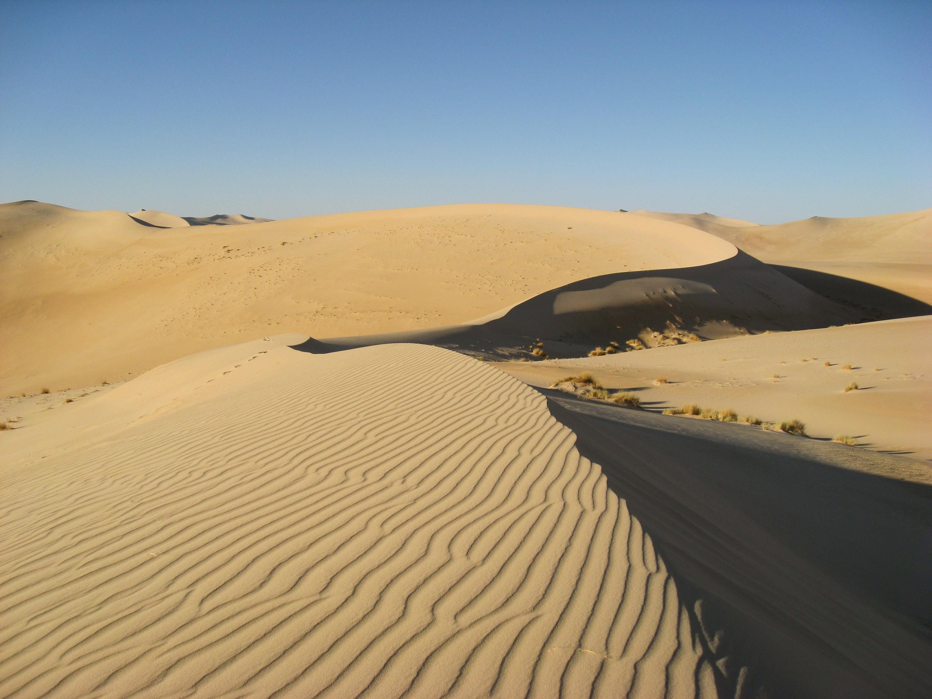 что поиск пустыня картинки дама