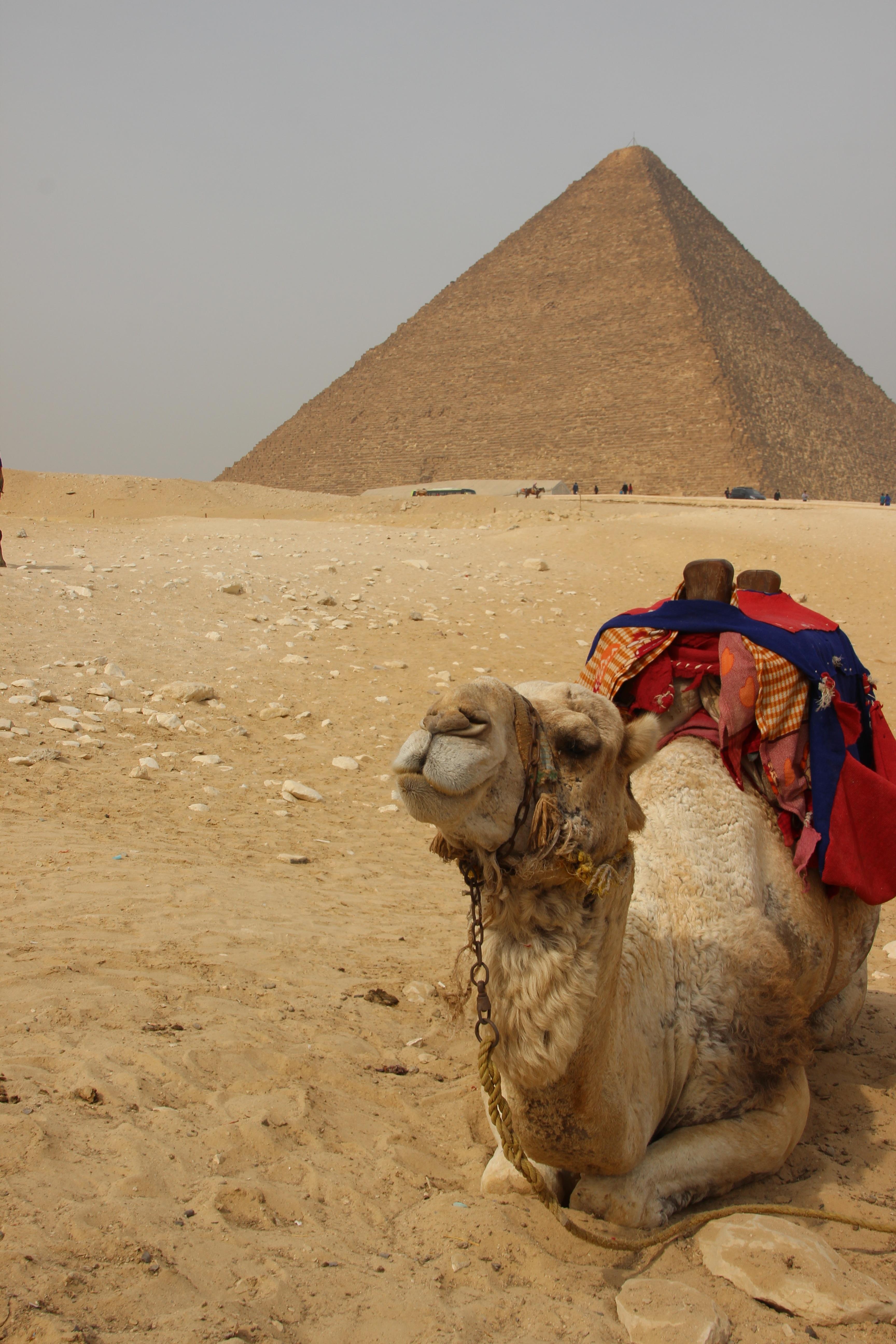 Gambar Pemandangan Pasir Gurun Monumen Piramida Afrika