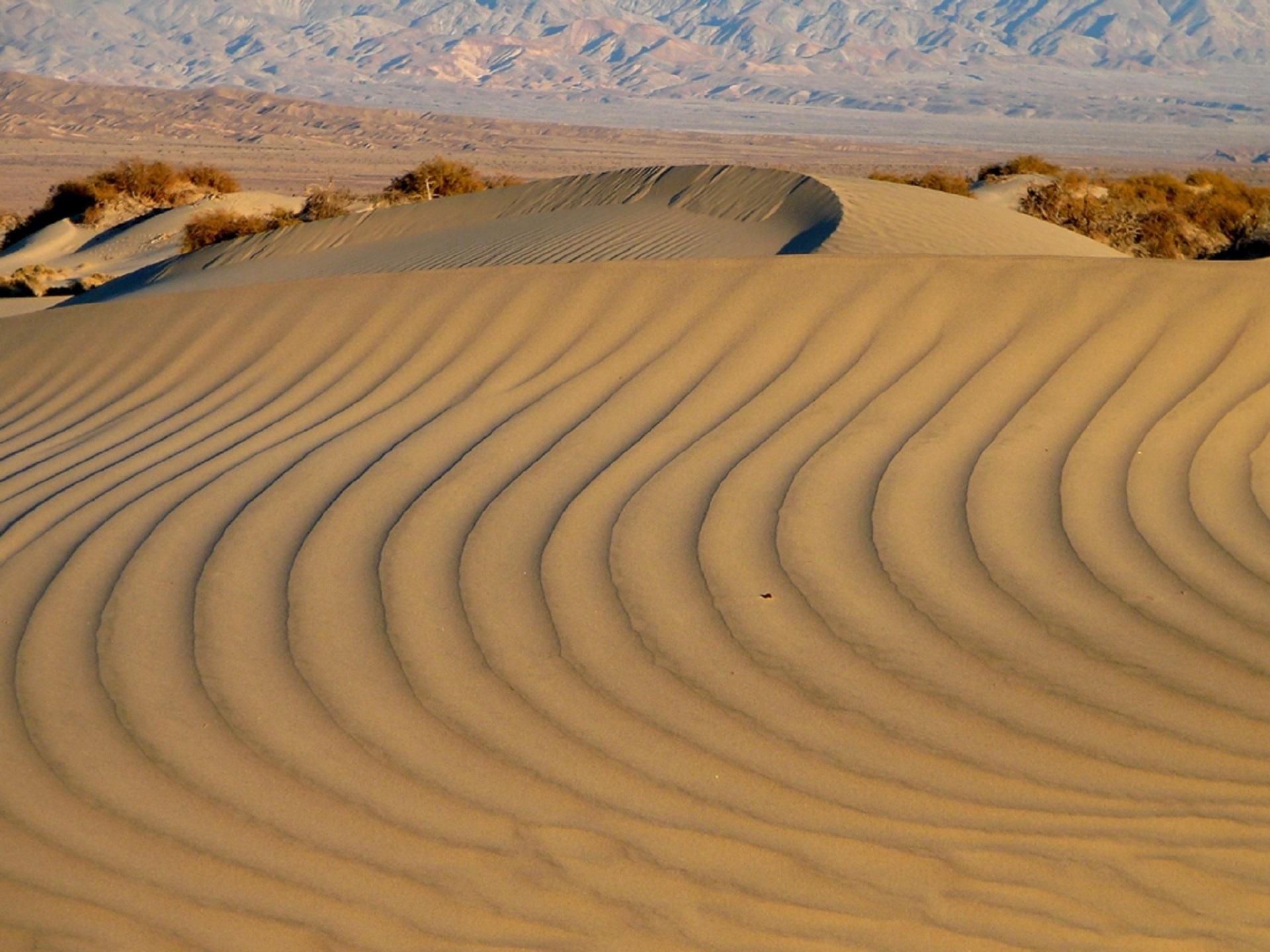 присланной песчаные гряды картинка недвижимость омске