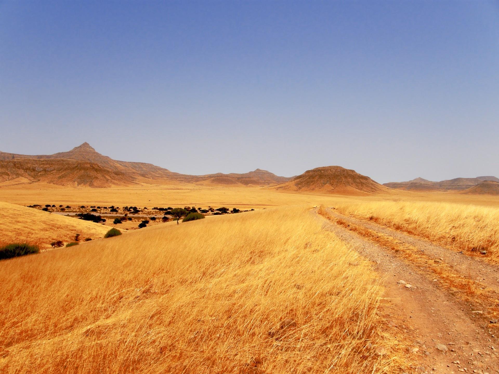Fotos gratis paisaje arena horizonte pista campo for Tierra suelo wallpaper