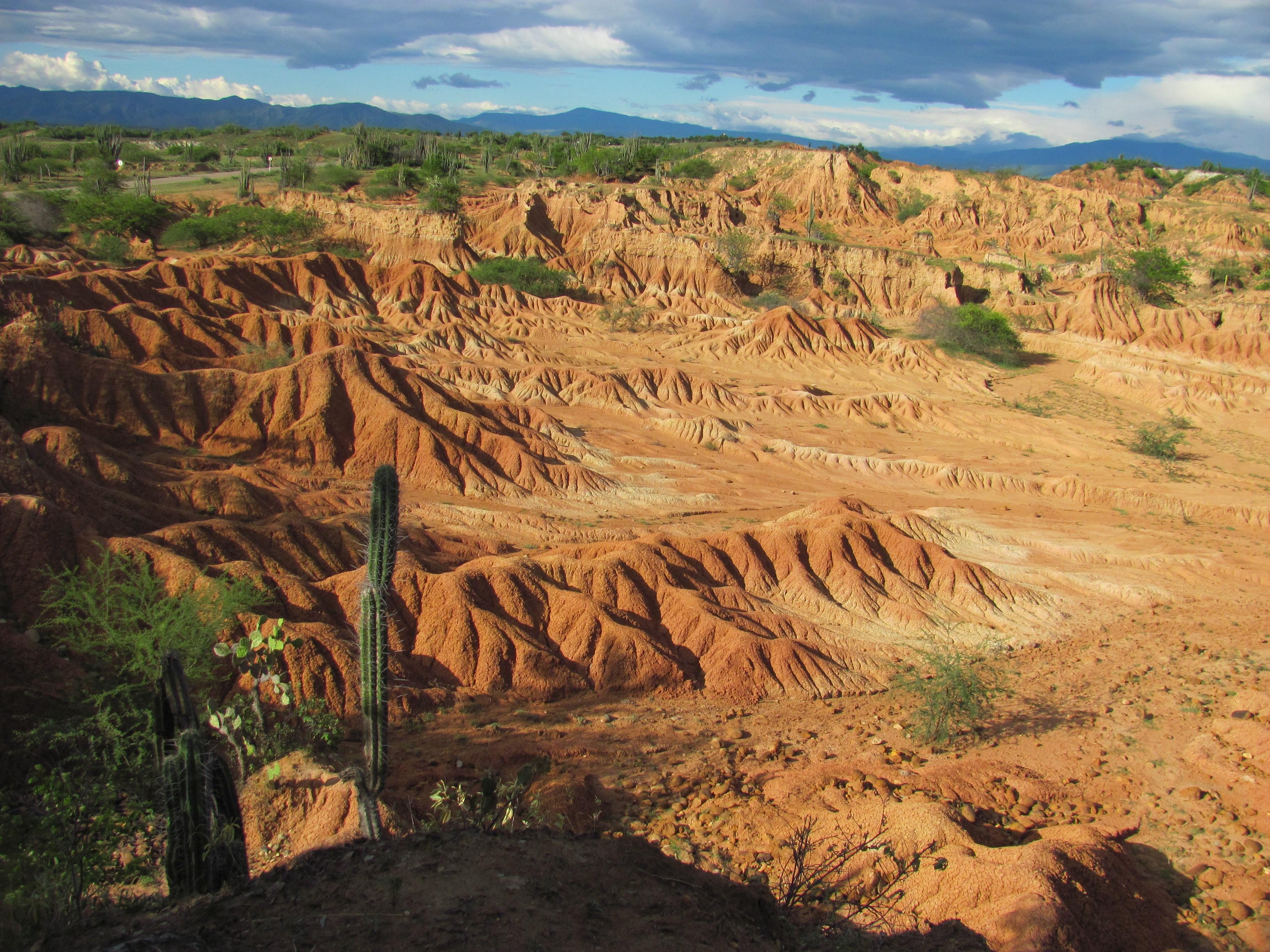 Free Images : landscape, sand, horizon, wilderness, arid ...