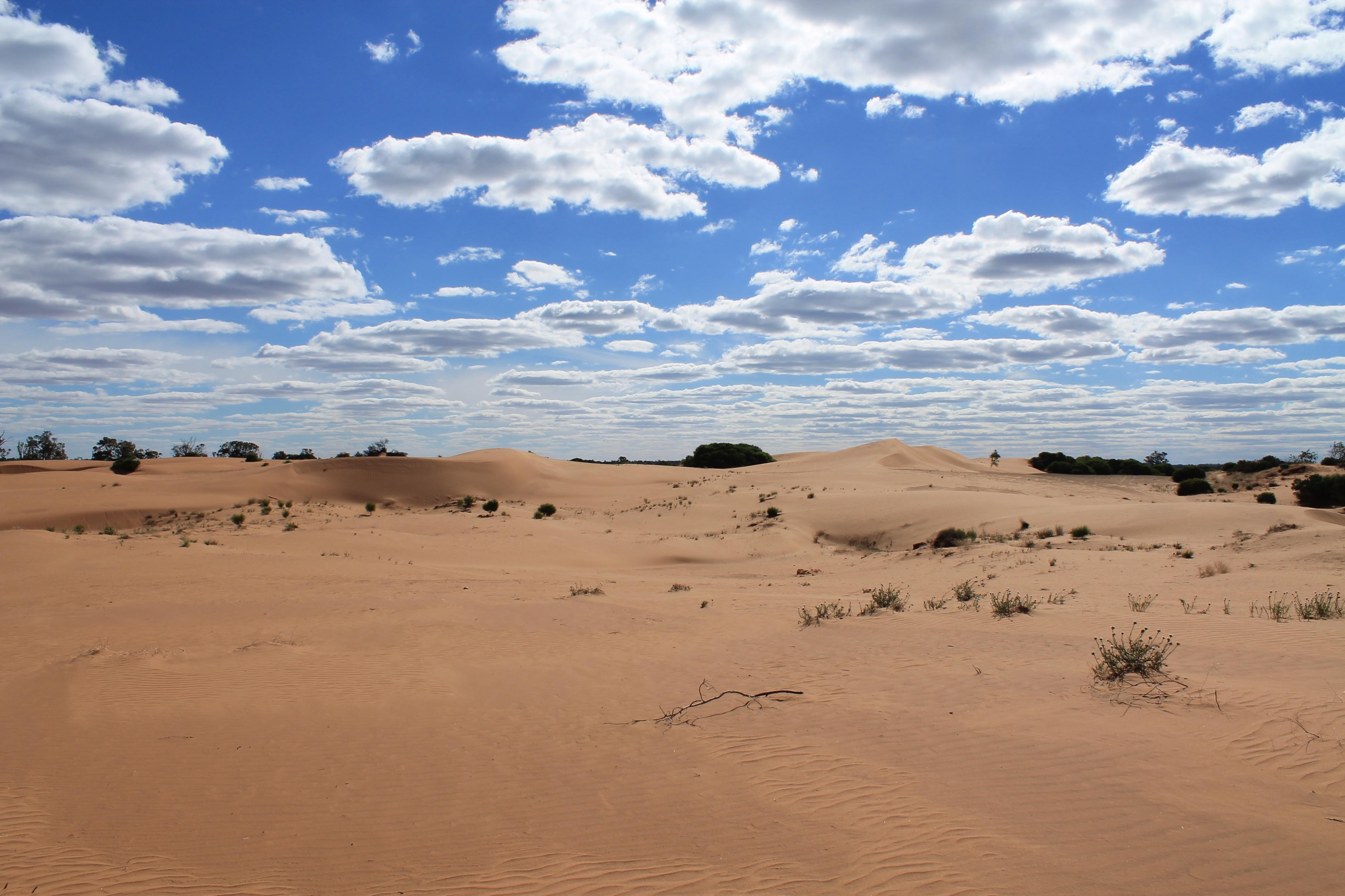 landscape sand sky desert dune plain australia dunes plateau habitat ecosystem sahara wadi landform erg perry & Free Images : landscape sand sky desert dune plain australia ...