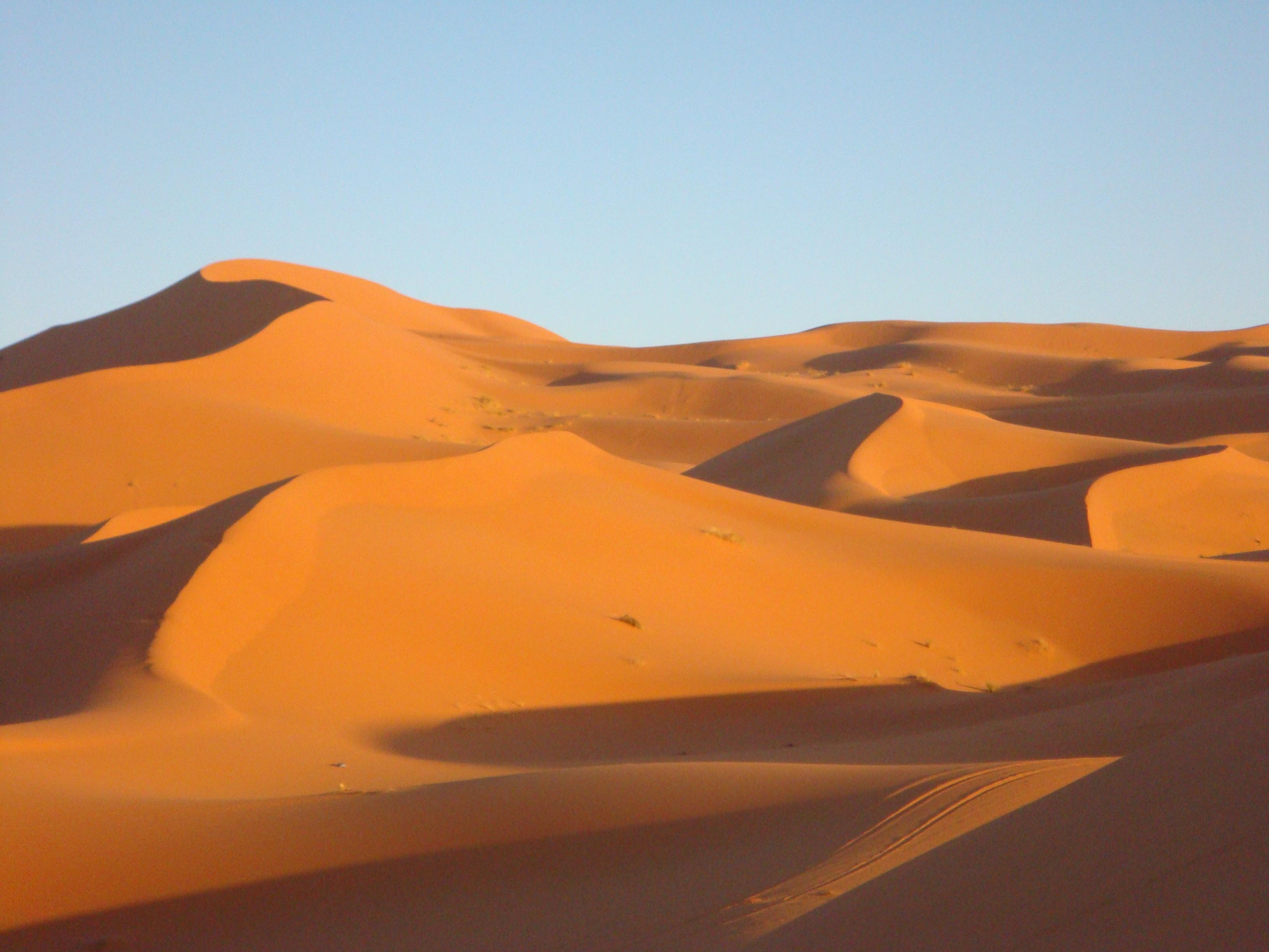 dune - photo #38