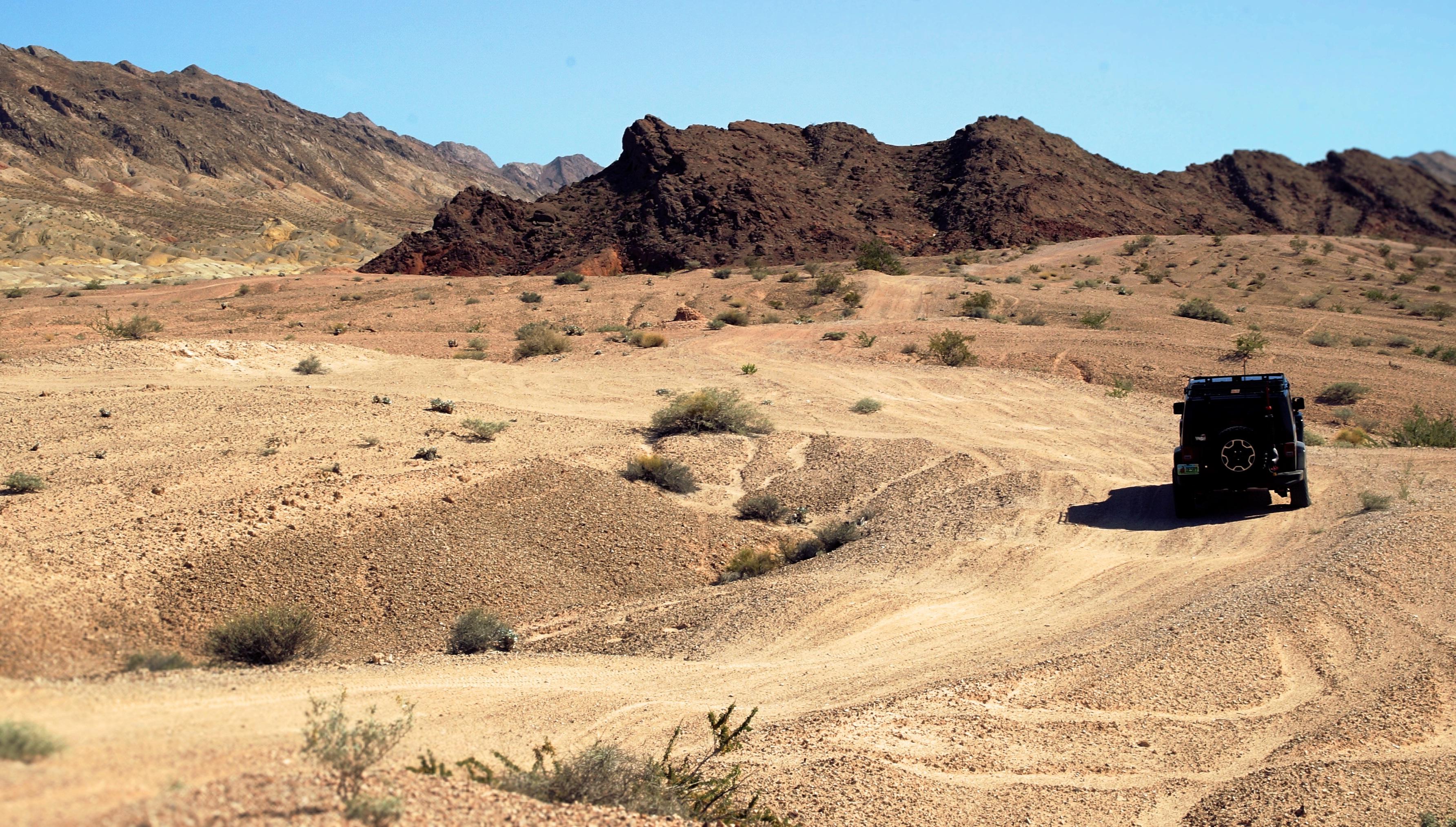 Ecosistema Desierto