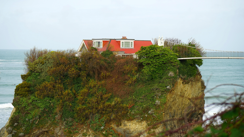 Kostenlose foto : Landschaft, Meer, Küste, Baum, Wasser, Gras, Rock ...