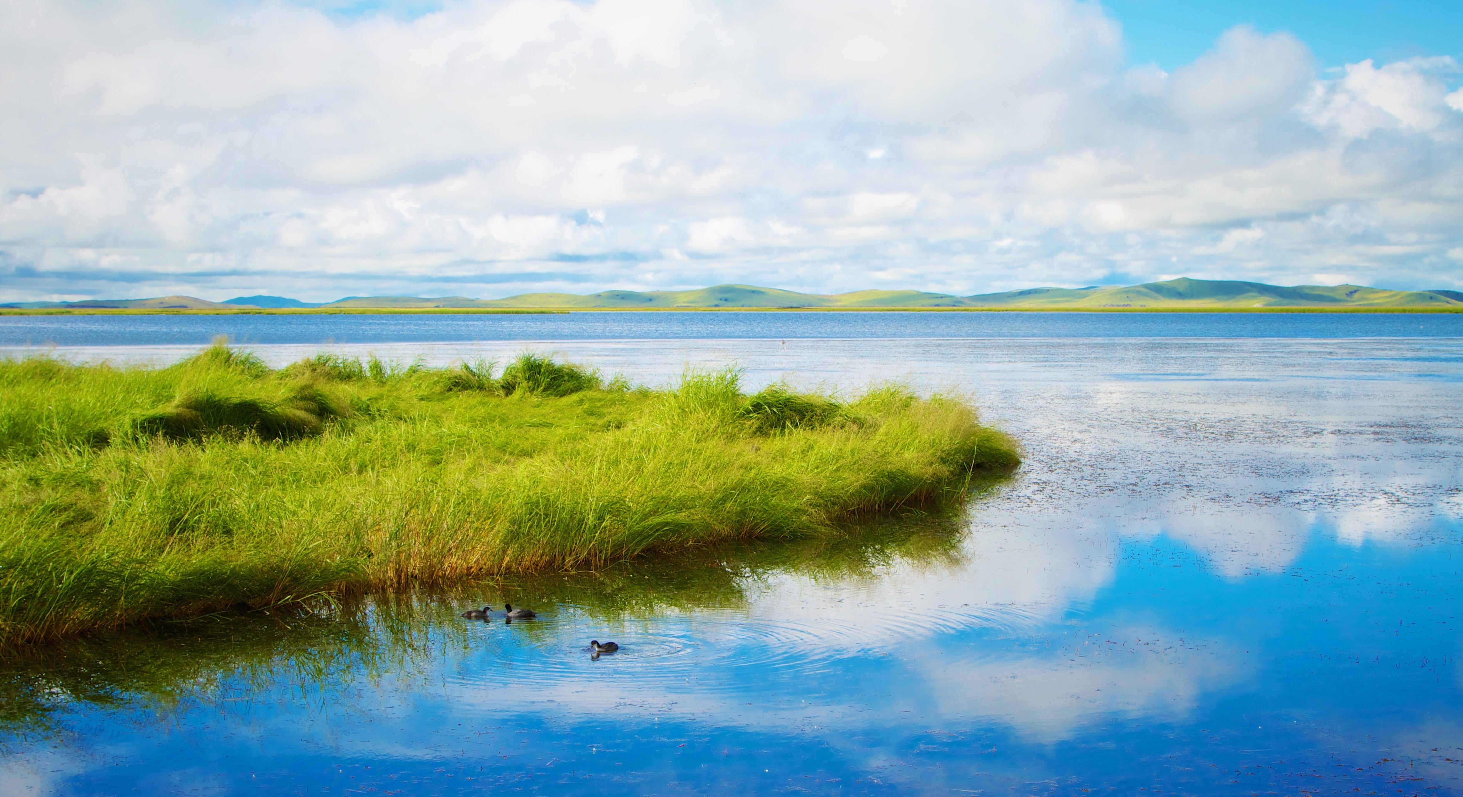 тем картинки небо трава вода виду очень прост
