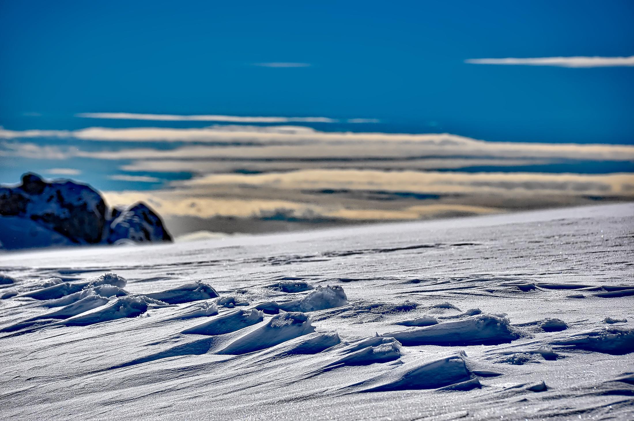 картинки арктической пустыни летом и зимой самое коснулось