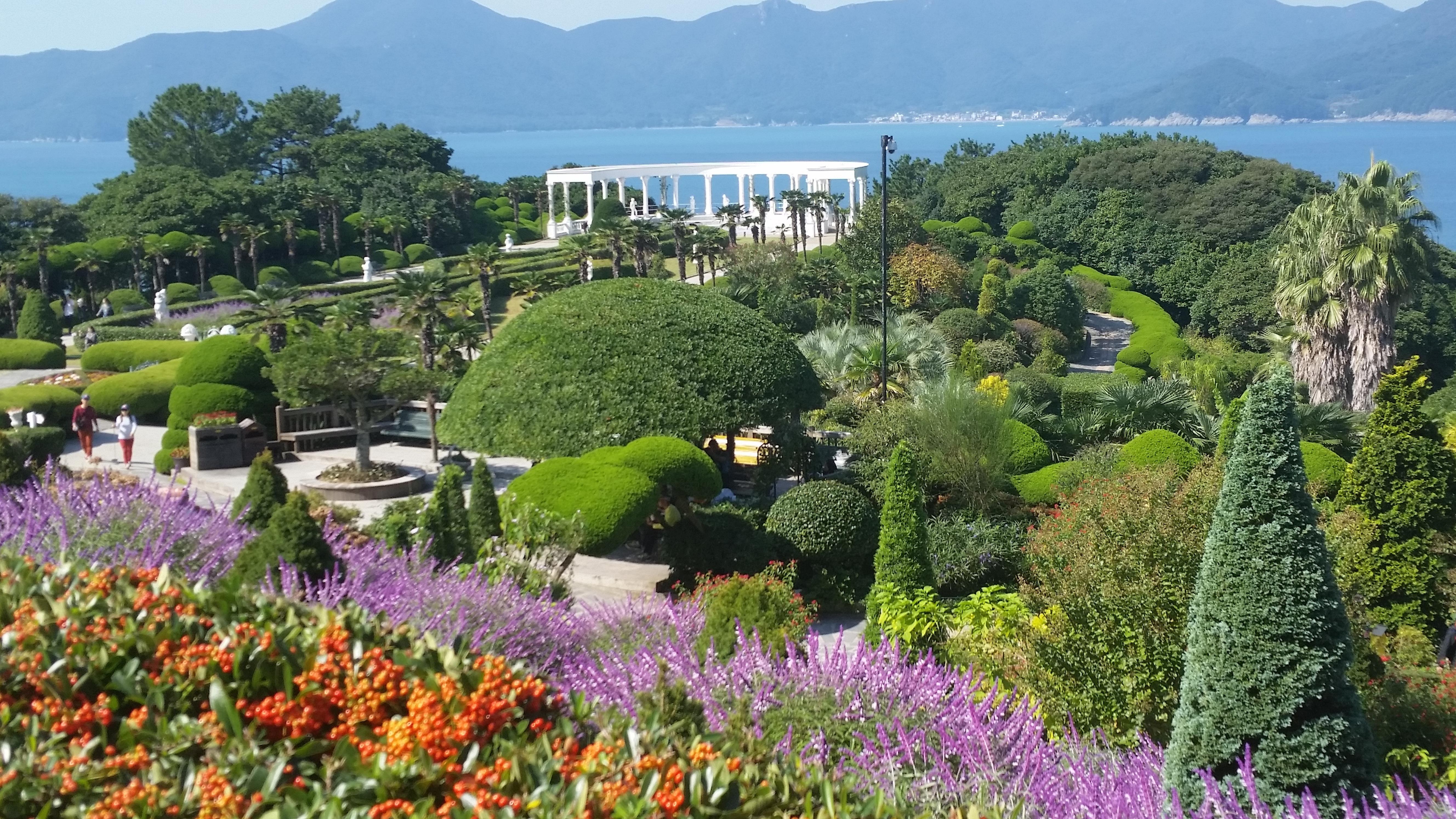 Free Images : landscape, sea, ocean, mountain, wood, flower, river ...