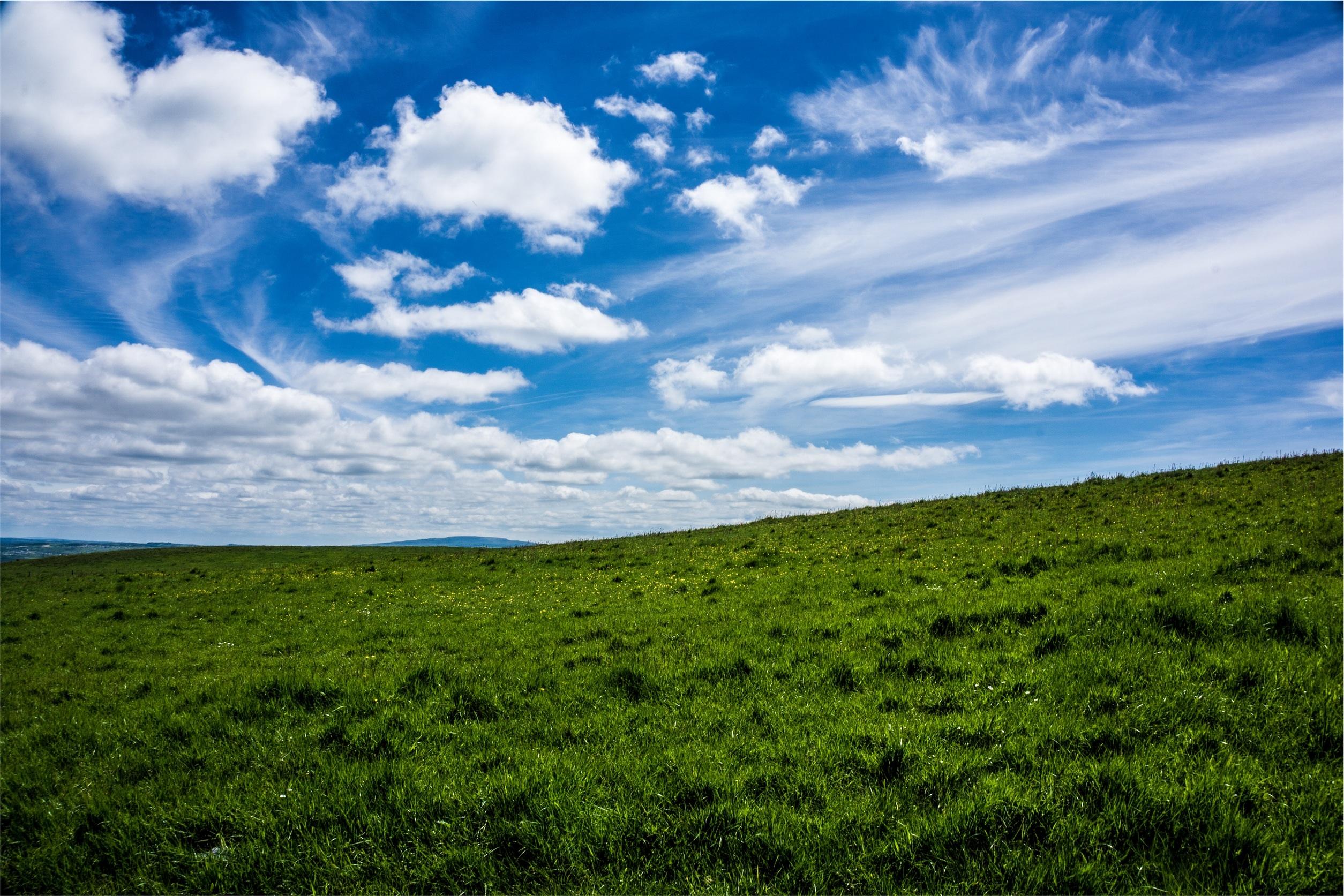 чистое небо и луг картинки сережка
