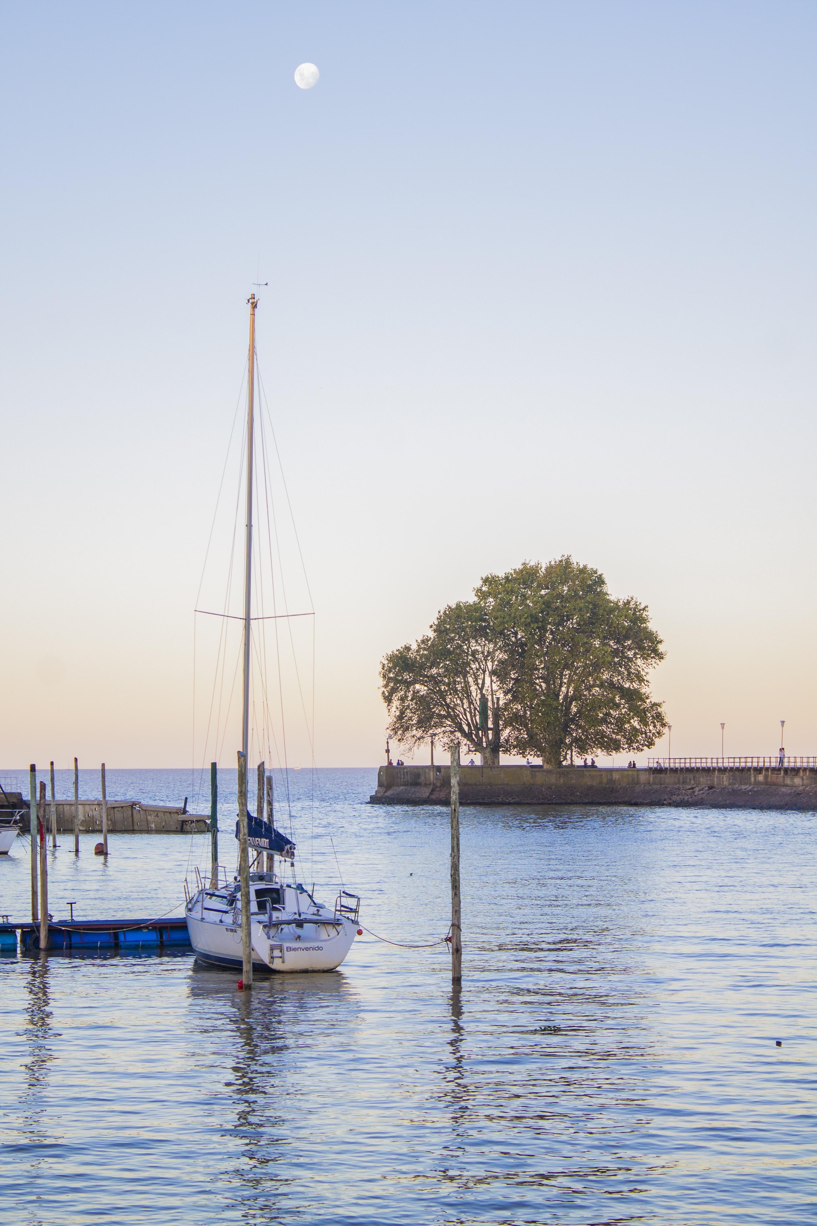 Segelschiffe auf dem meer sonnenuntergang  Kostenlose foto : Landschaft, Meer, Baum, Wasser, Natur, Dock ...