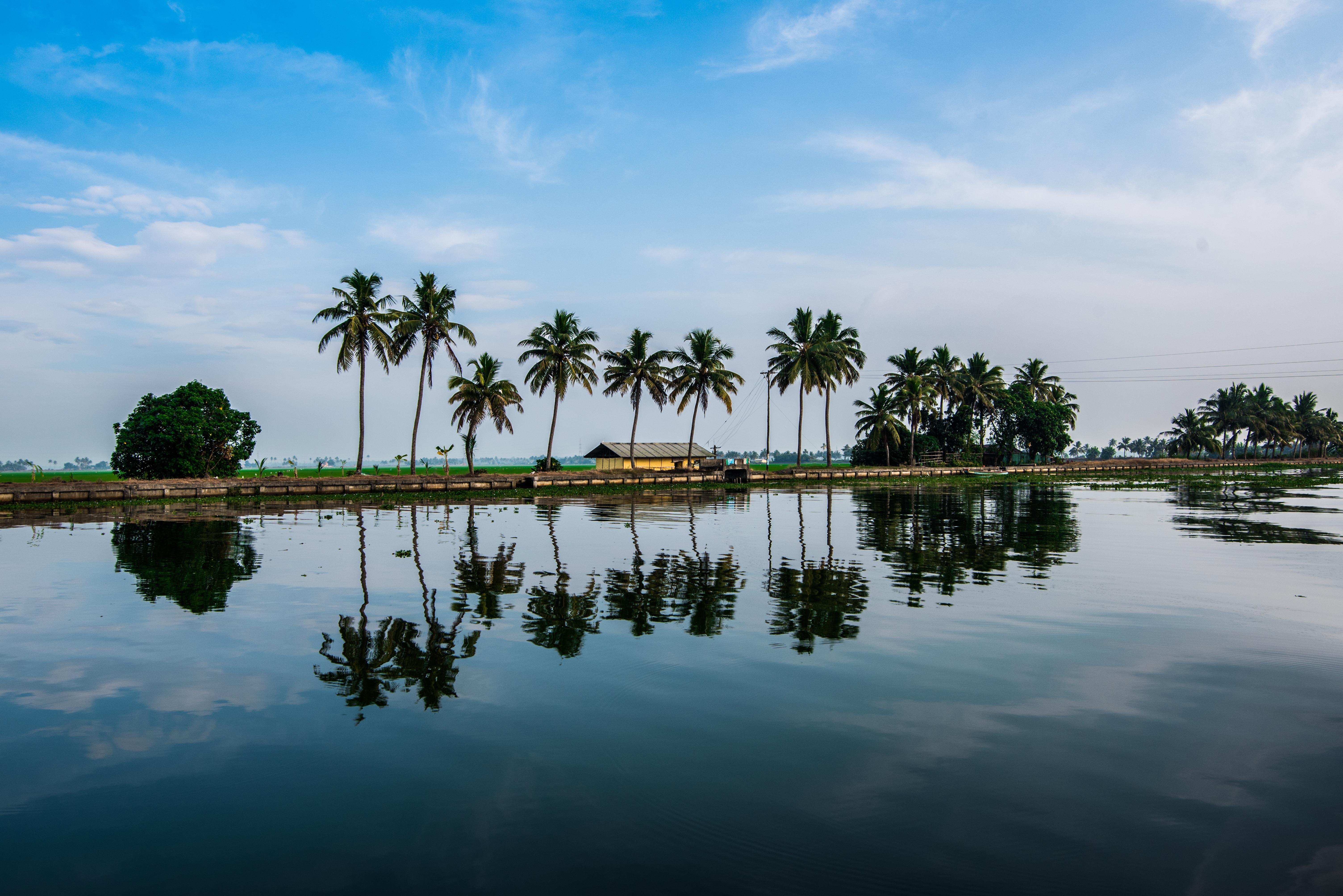 Gambar : pemandangan, laut, pohon, alam, Outdoor, horison ...