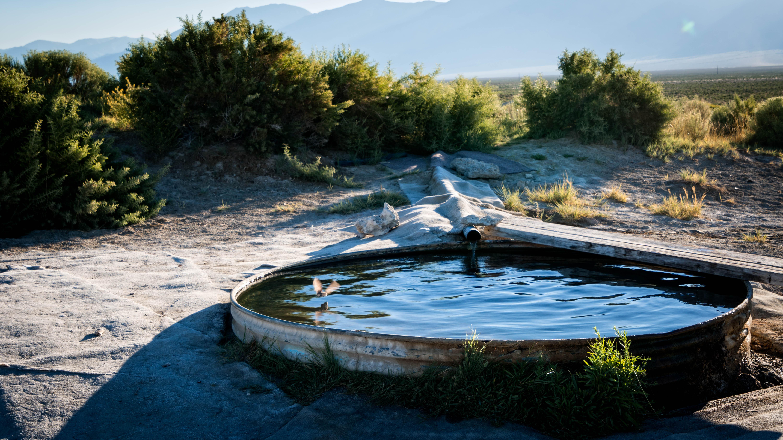 GroB Landschaft Meer Wasser Gras Teich Betrachtung Pool Hinterhof Gewässer  Wasser Funktion